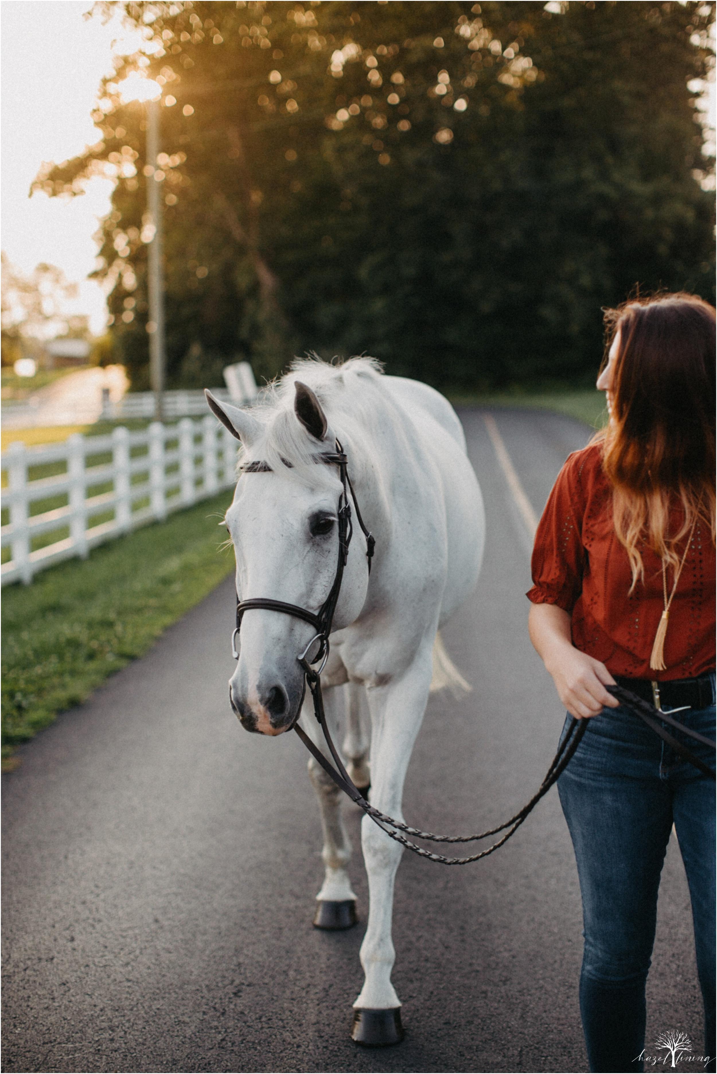 taylor-adams-and-horse-delaware-valley-university-delval-summer-equestrian-portrait-session-hazel-lining-photography-destination-elopement-wedding-engagement-photography_0014.jpg