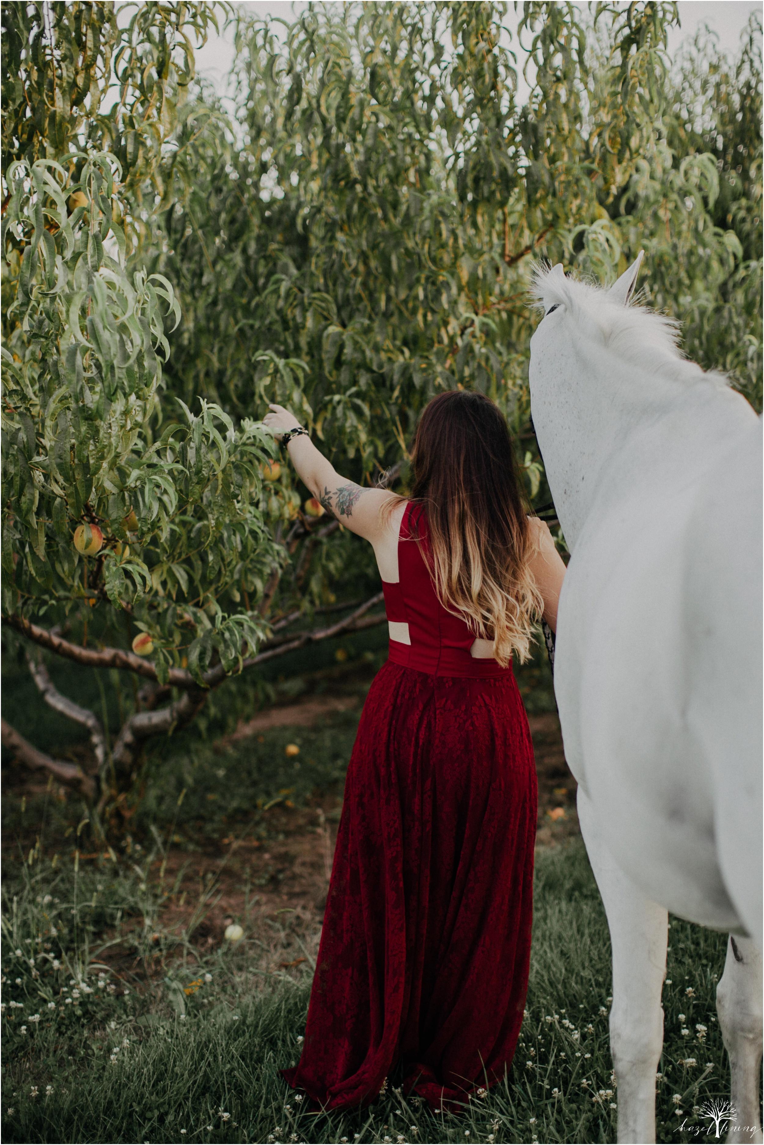 taylor-adams-and-horse-delaware-valley-university-delval-summer-equestrian-portrait-session-hazel-lining-photography-destination-elopement-wedding-engagement-photography_0041.jpg