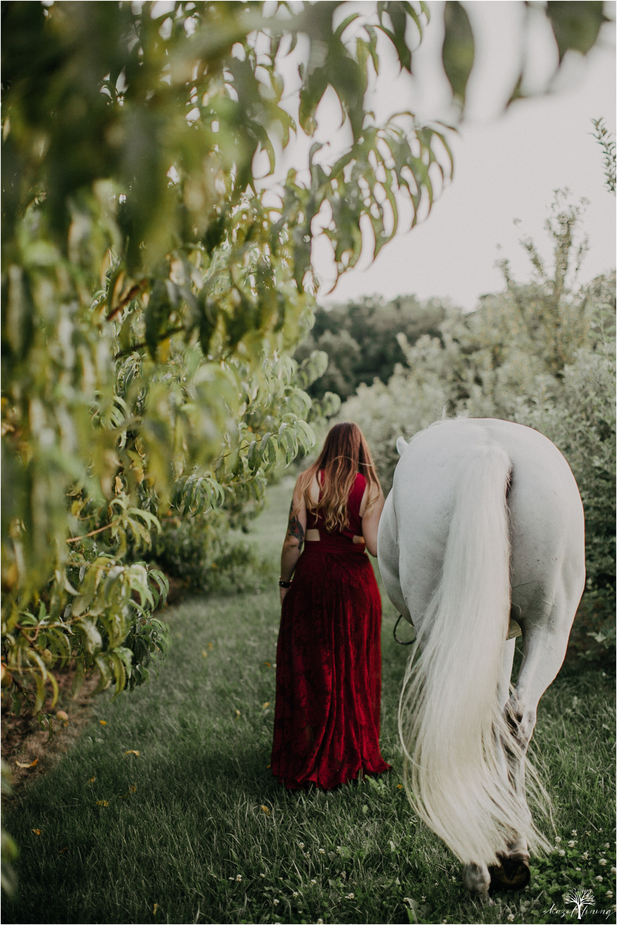 taylor-adams-and-horse-delaware-valley-university-delval-summer-equestrian-portrait-session-hazel-lining-photography-destination-elopement-wedding-engagement-photography_0042.jpg