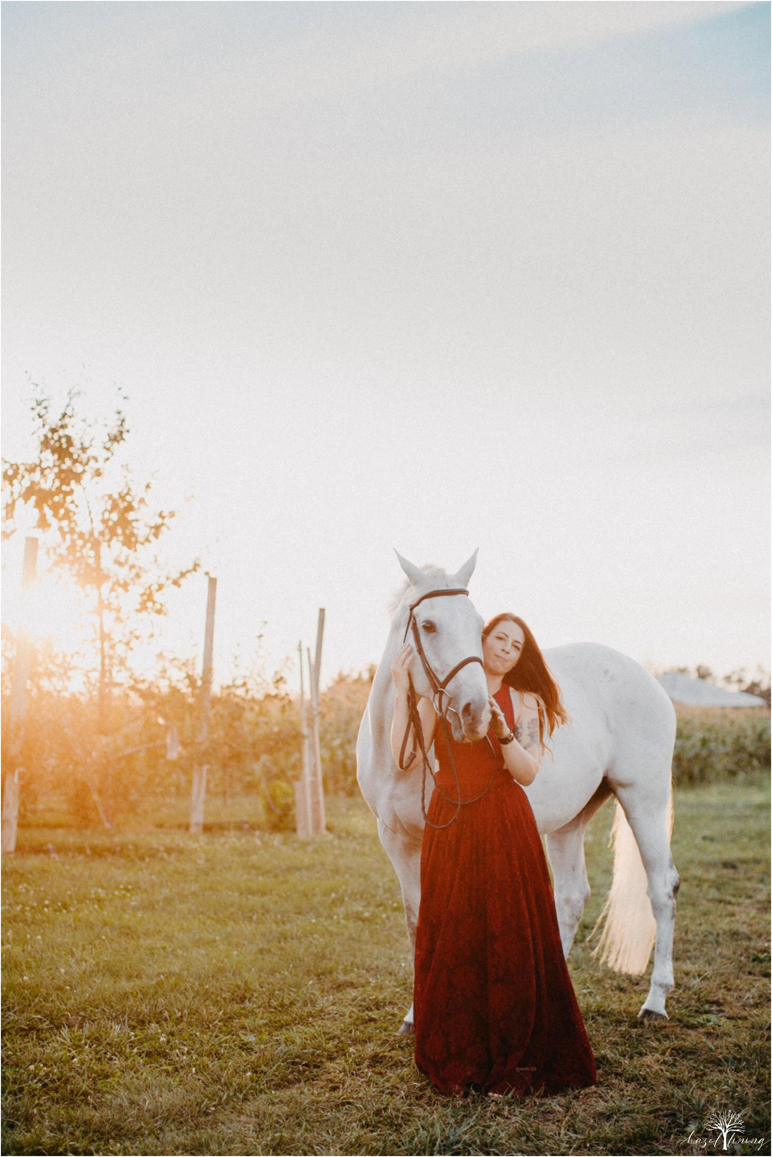 taylor-adams-and-horse-delaware-valley-university-delval-summer-equestrian-portrait-session-hazel-lining-photography-destination-elopement-wedding-engagement-photography_0066.jpg