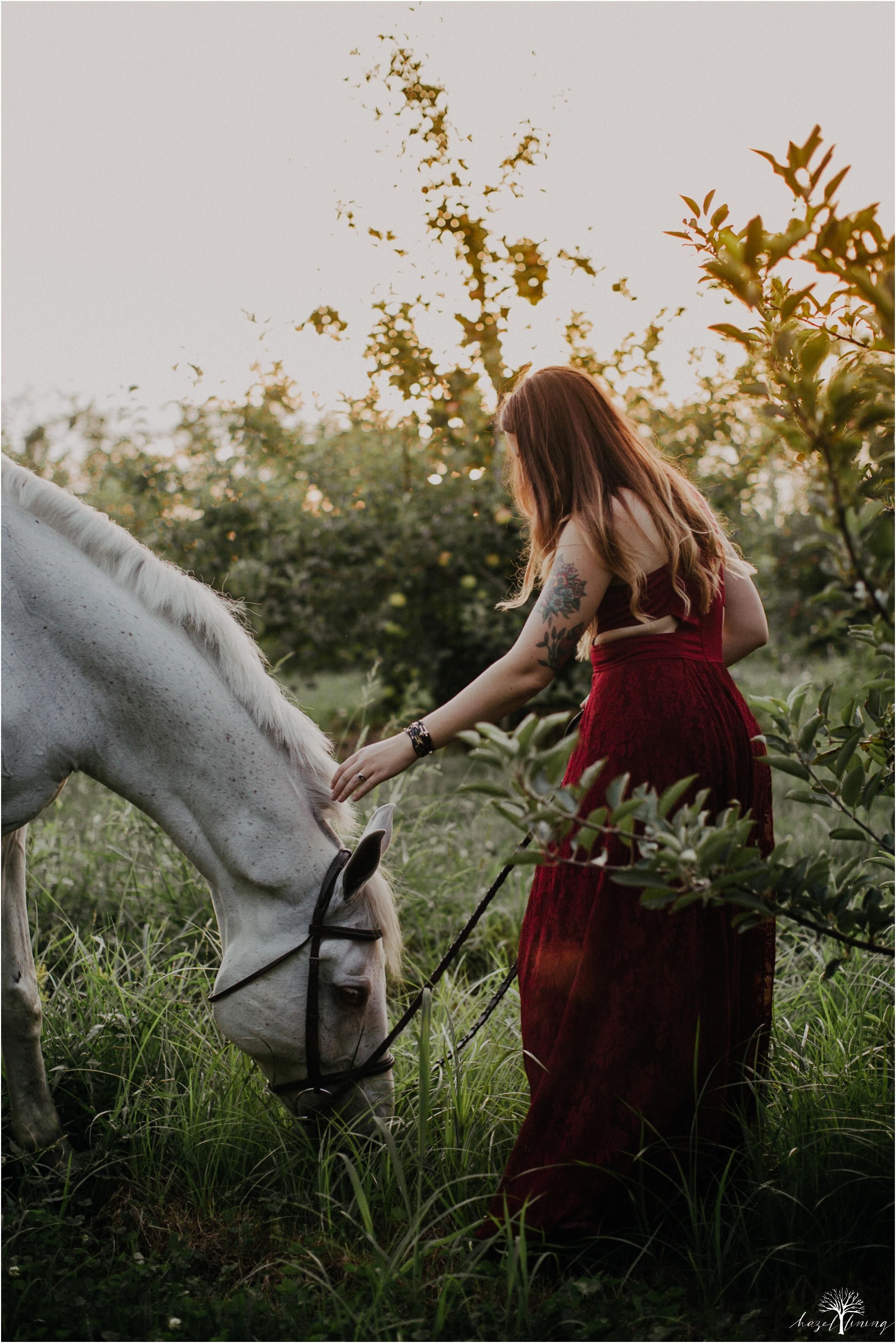 taylor-adams-and-horse-delaware-valley-university-delval-summer-equestrian-portrait-session-hazel-lining-photography-destination-elopement-wedding-engagement-photography_0075.jpg