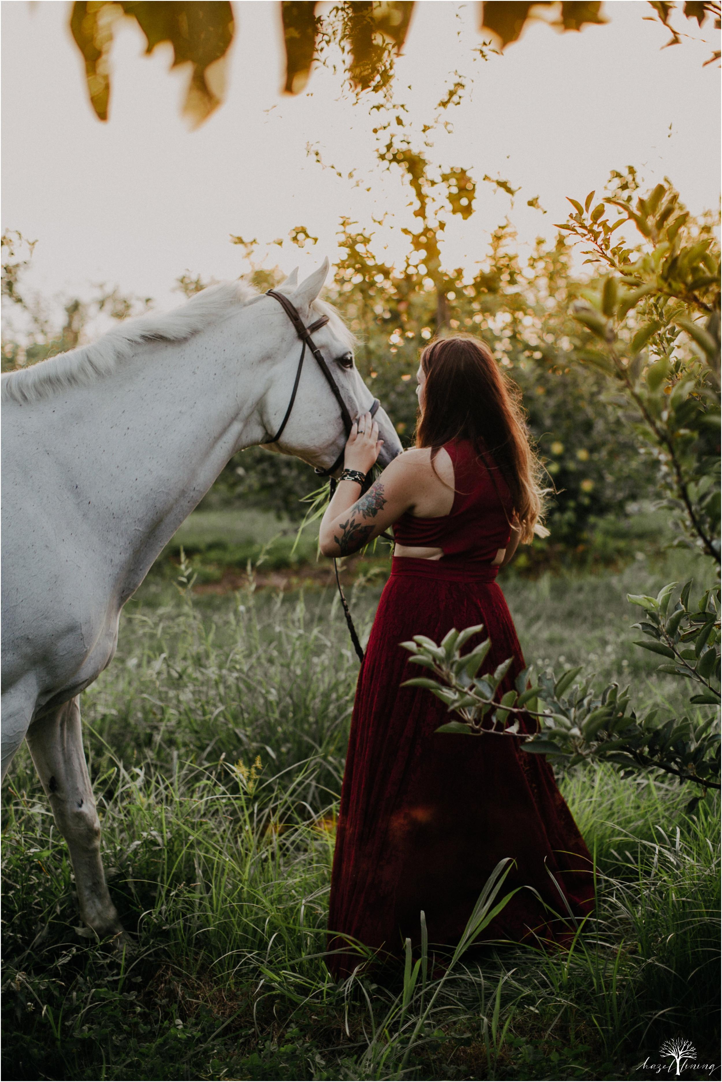 taylor-adams-and-horse-delaware-valley-university-delval-summer-equestrian-portrait-session-hazel-lining-photography-destination-elopement-wedding-engagement-photography_0077.jpg
