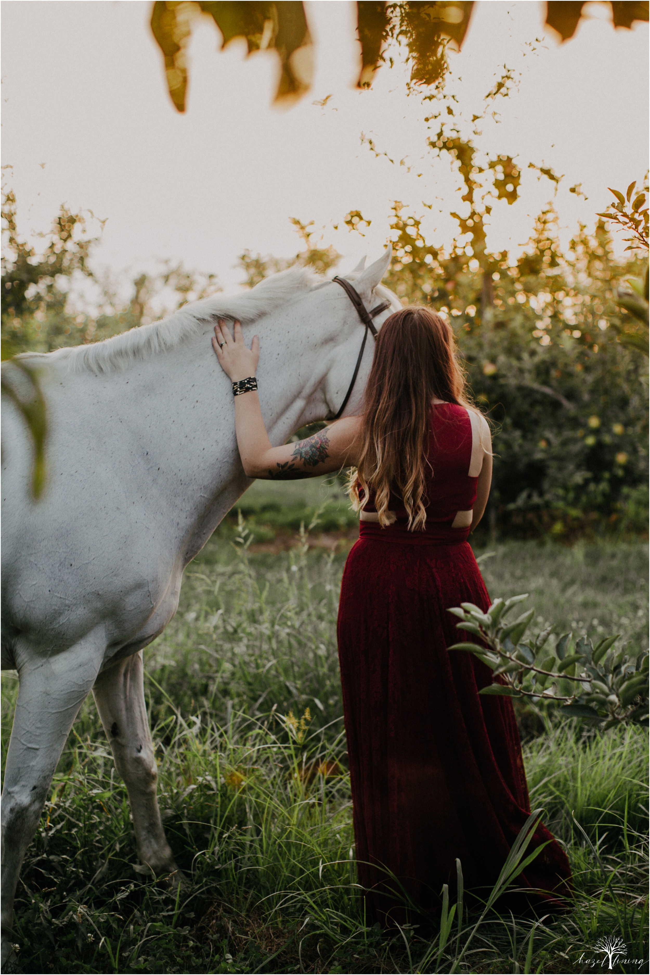 taylor-adams-and-horse-delaware-valley-university-delval-summer-equestrian-portrait-session-hazel-lining-photography-destination-elopement-wedding-engagement-photography_0078.jpg