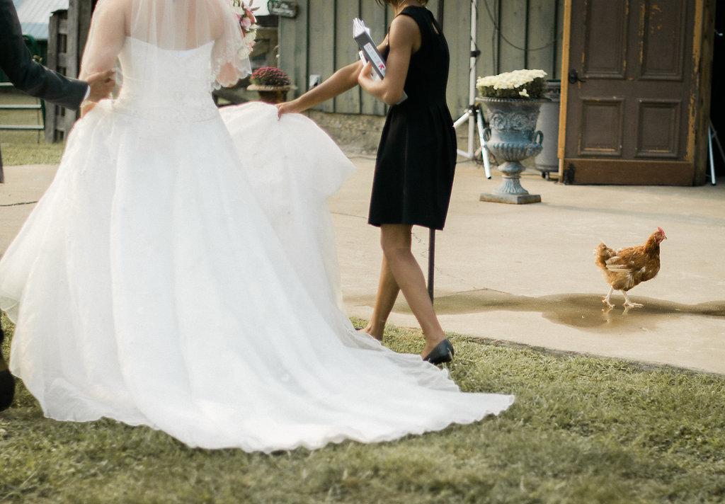 chicken at wedding ceremony photo