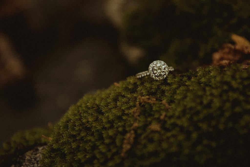 diamond ring sitting in moss