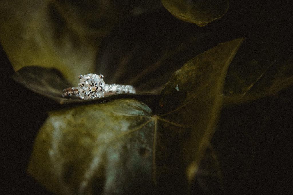 Diamond ring sitting on a leaf