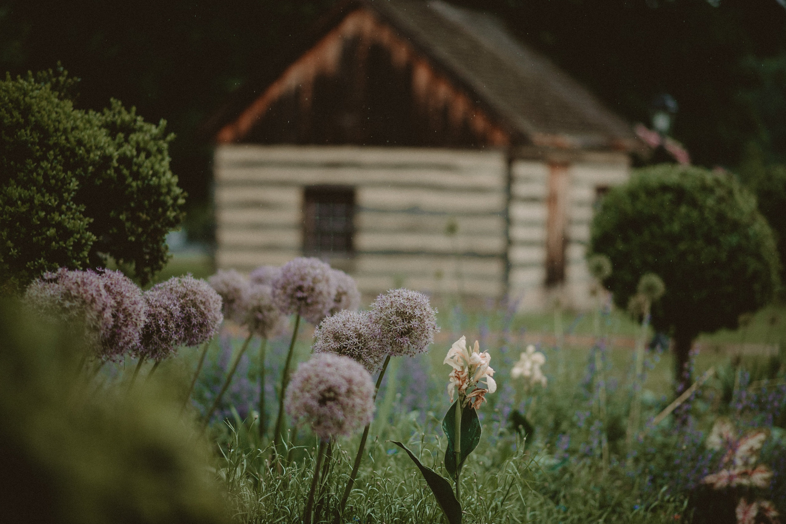 Field with flowers at wedding venue