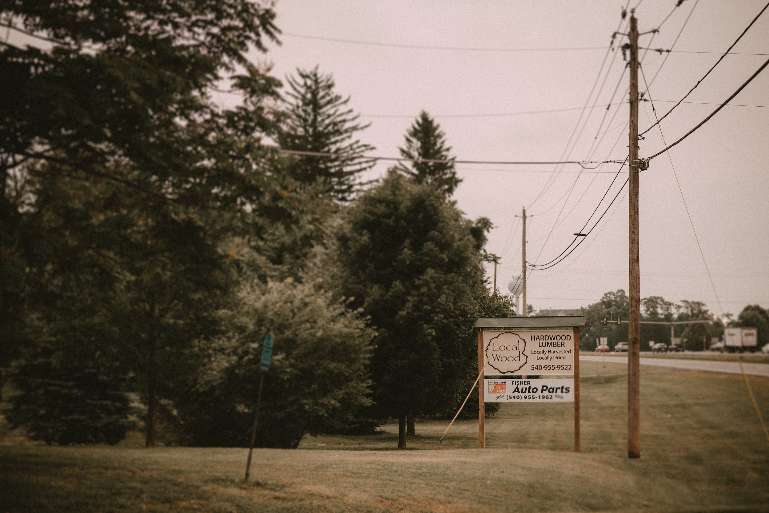 Business sign in front of pine trees