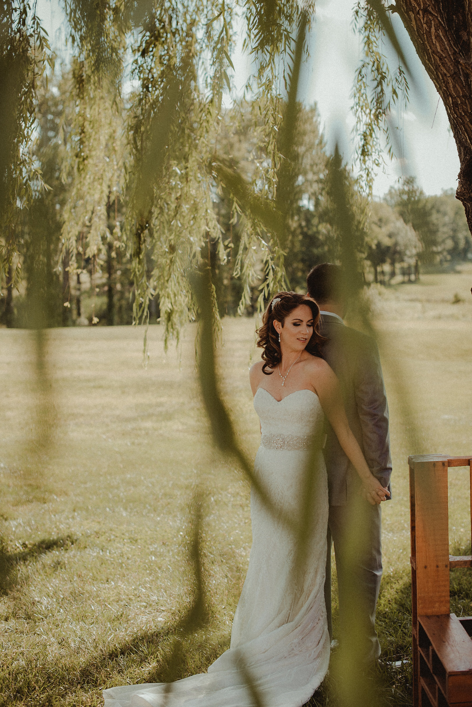 Bride and groom seen through a willow tree