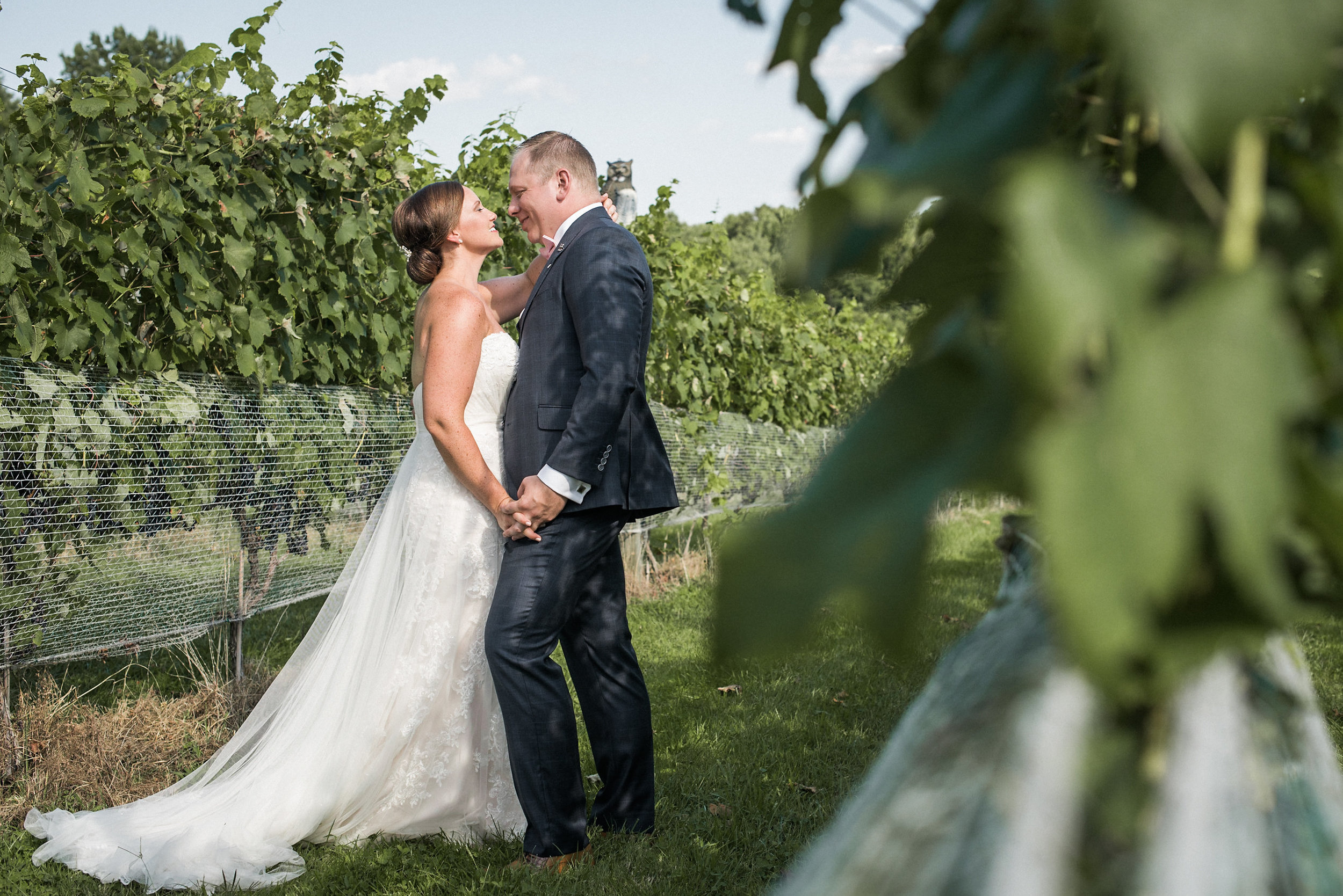 Bride and groom seen from behind vine