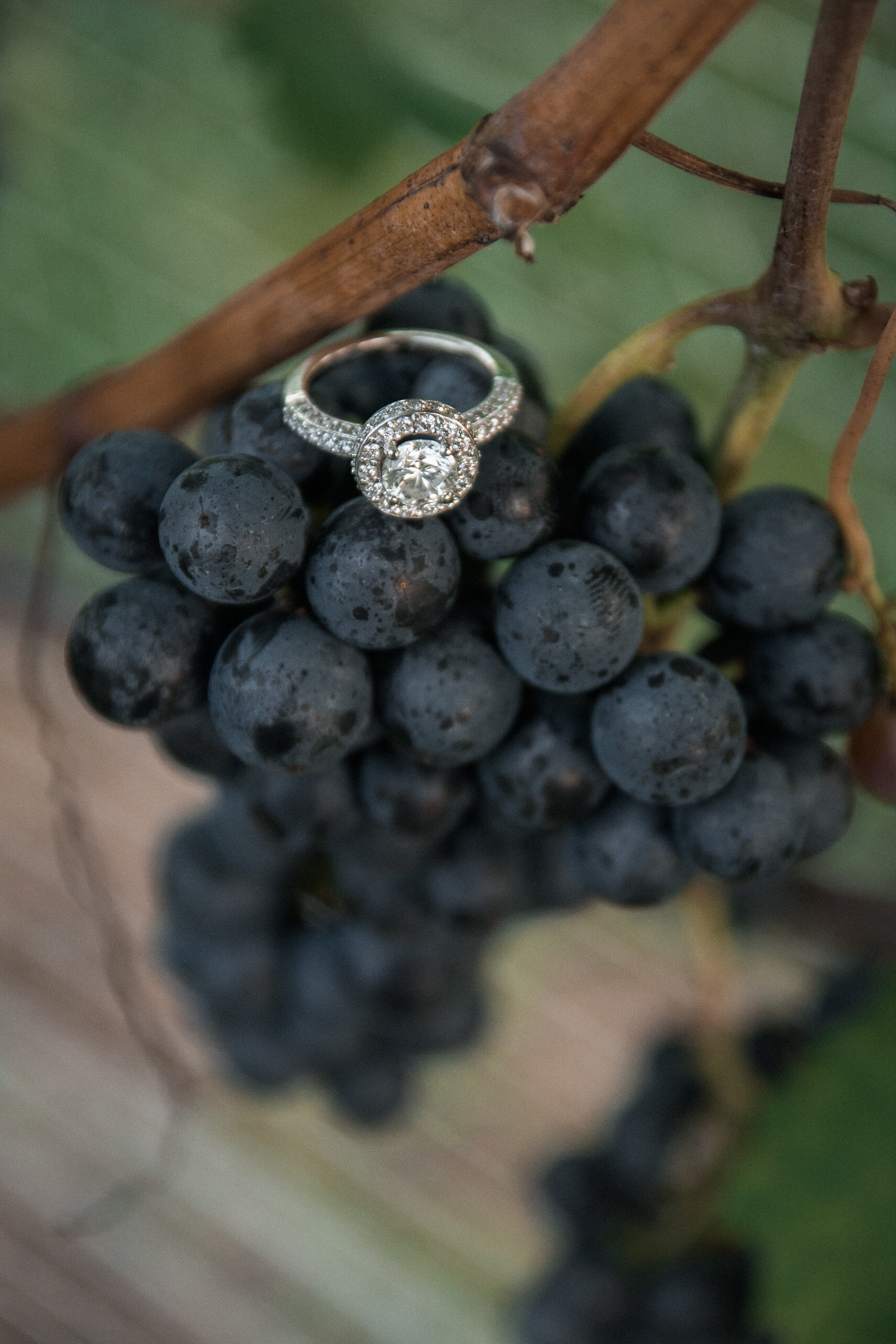 Diamond ring on a cluster of grapes