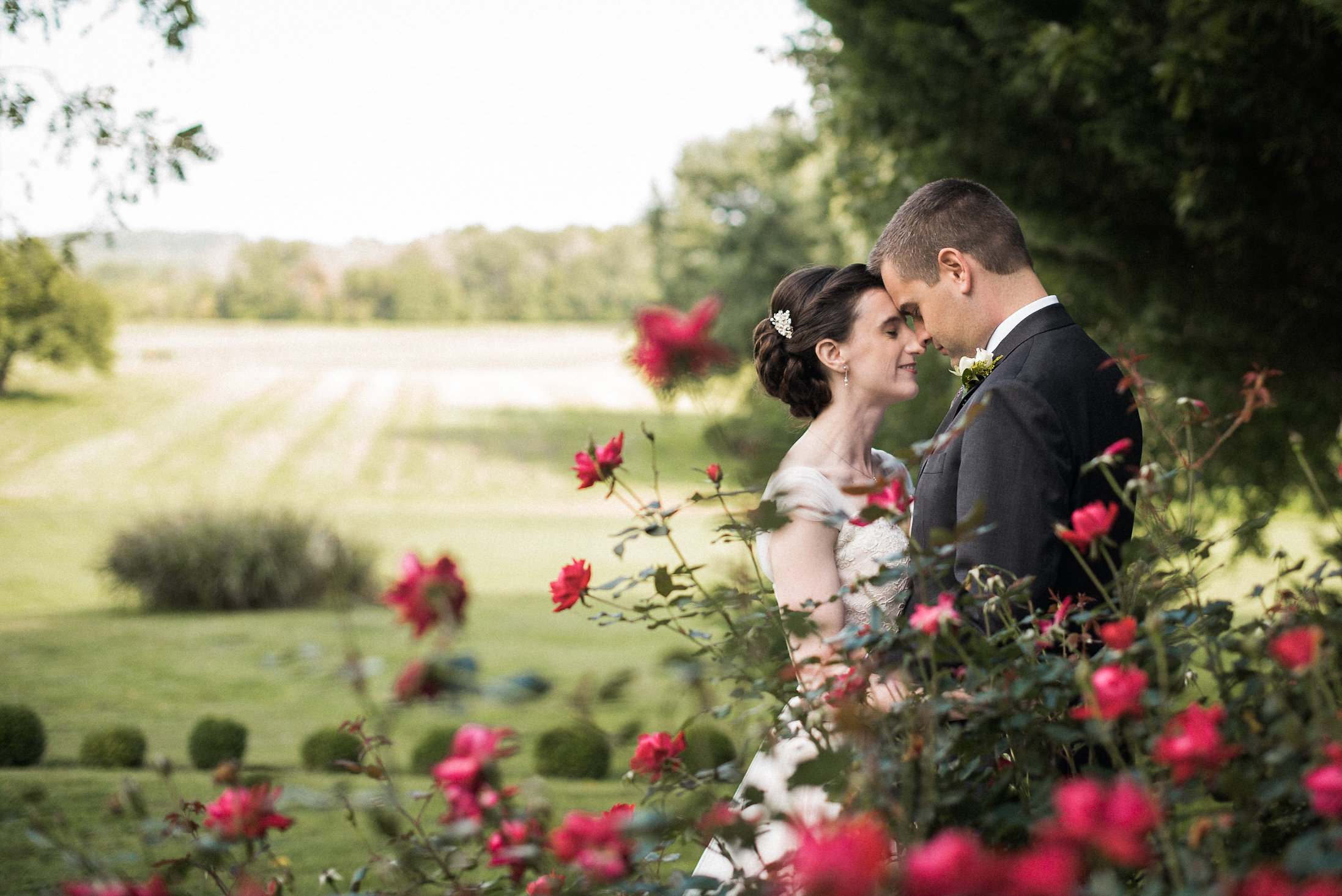 Bride and groom embracing behind rose bush