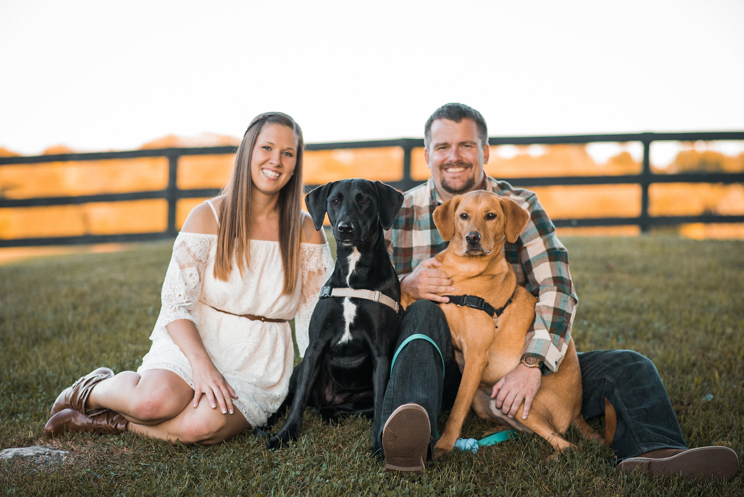 Couple posing with dogs