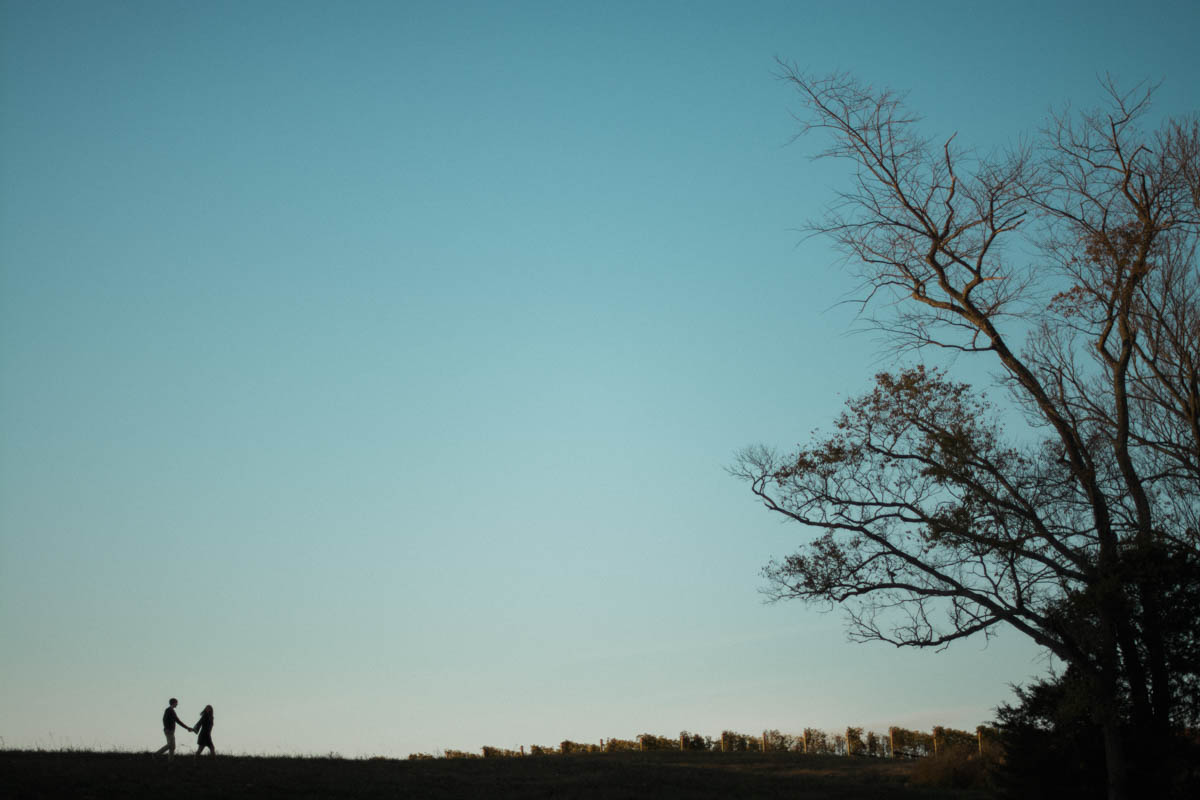 stone+tower+winery+engagement+session+photo.jpg