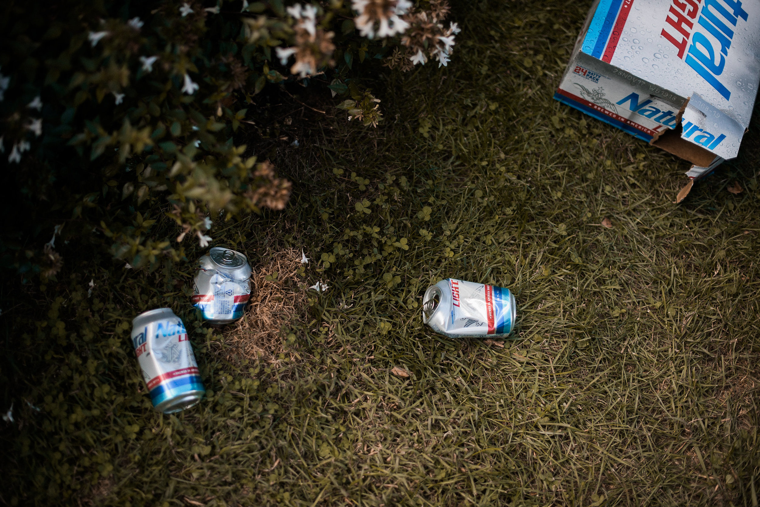 Beer cans on ground