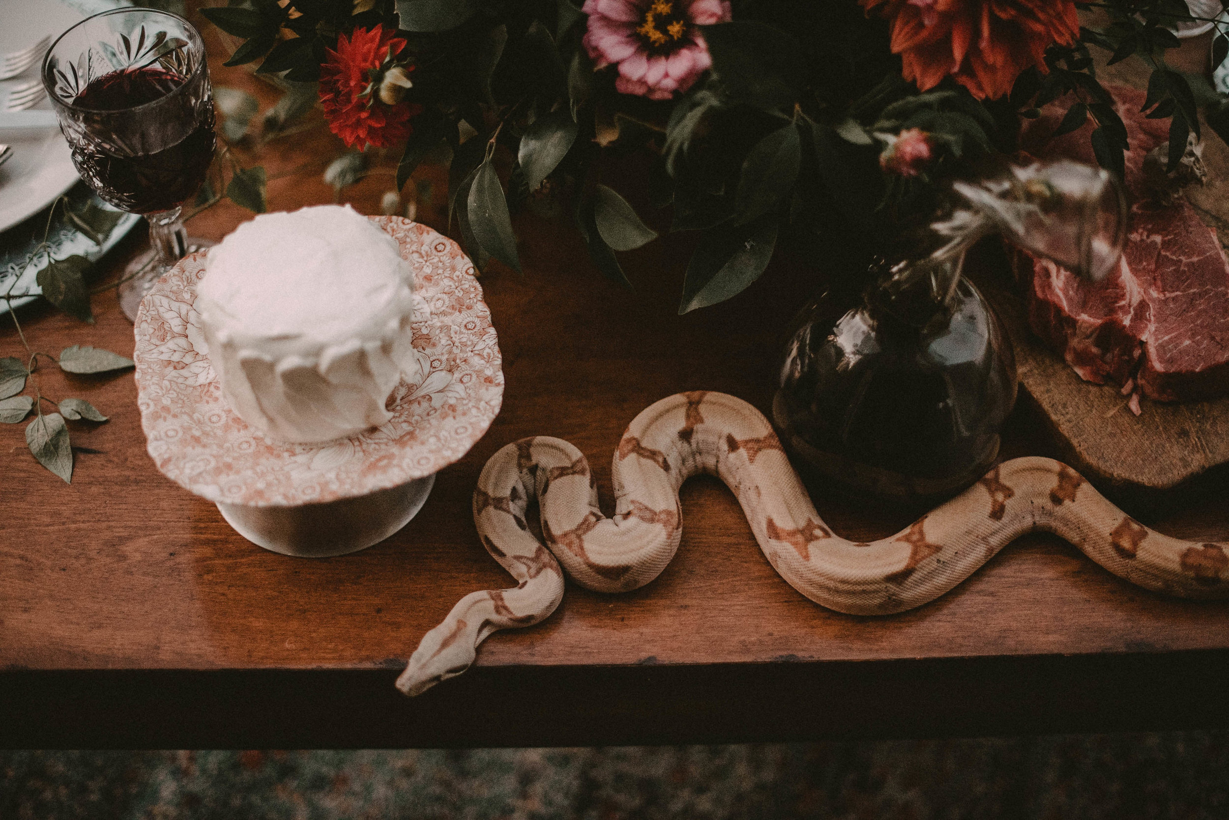 Snake with a wedding cake