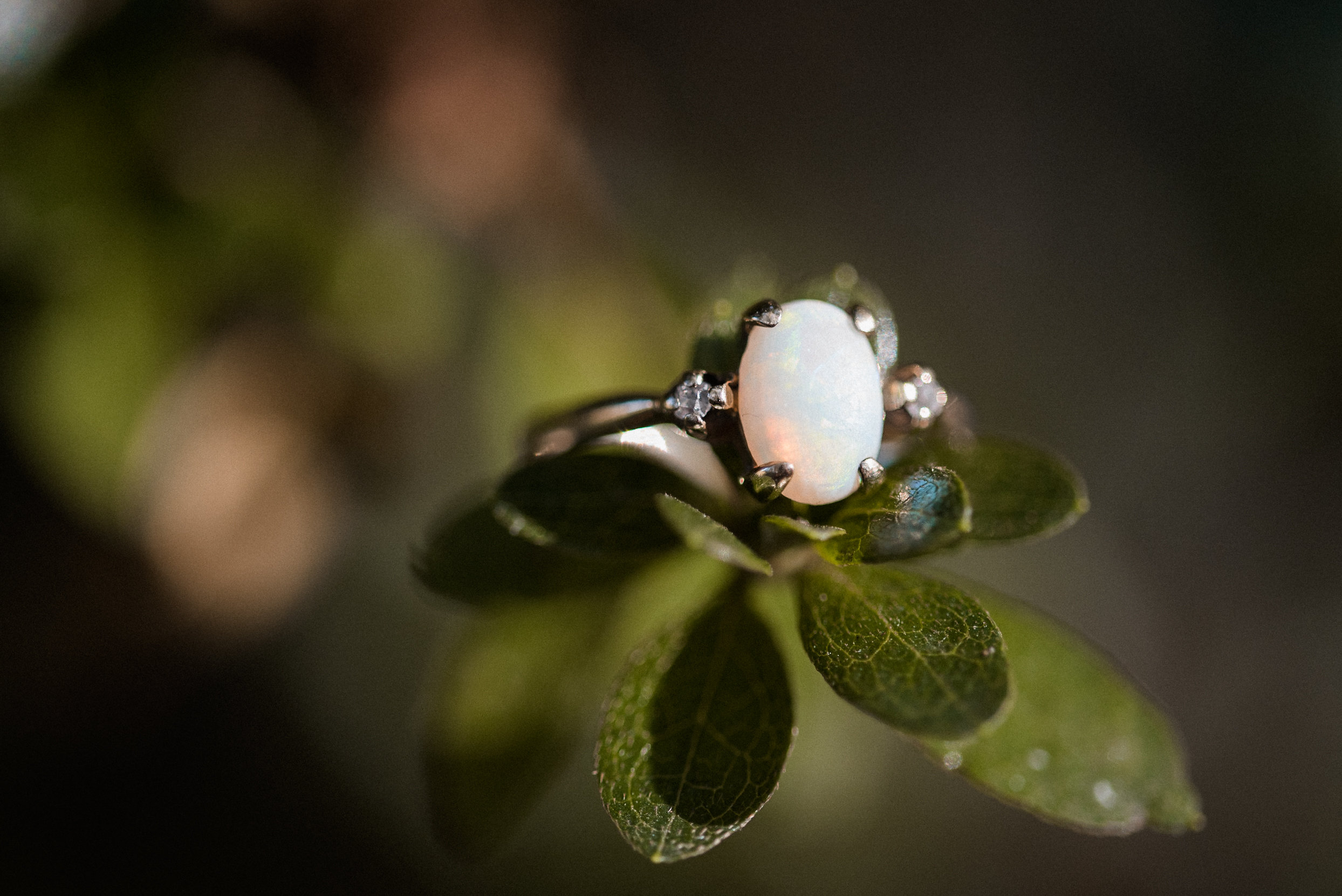 Wedding ring on leaves