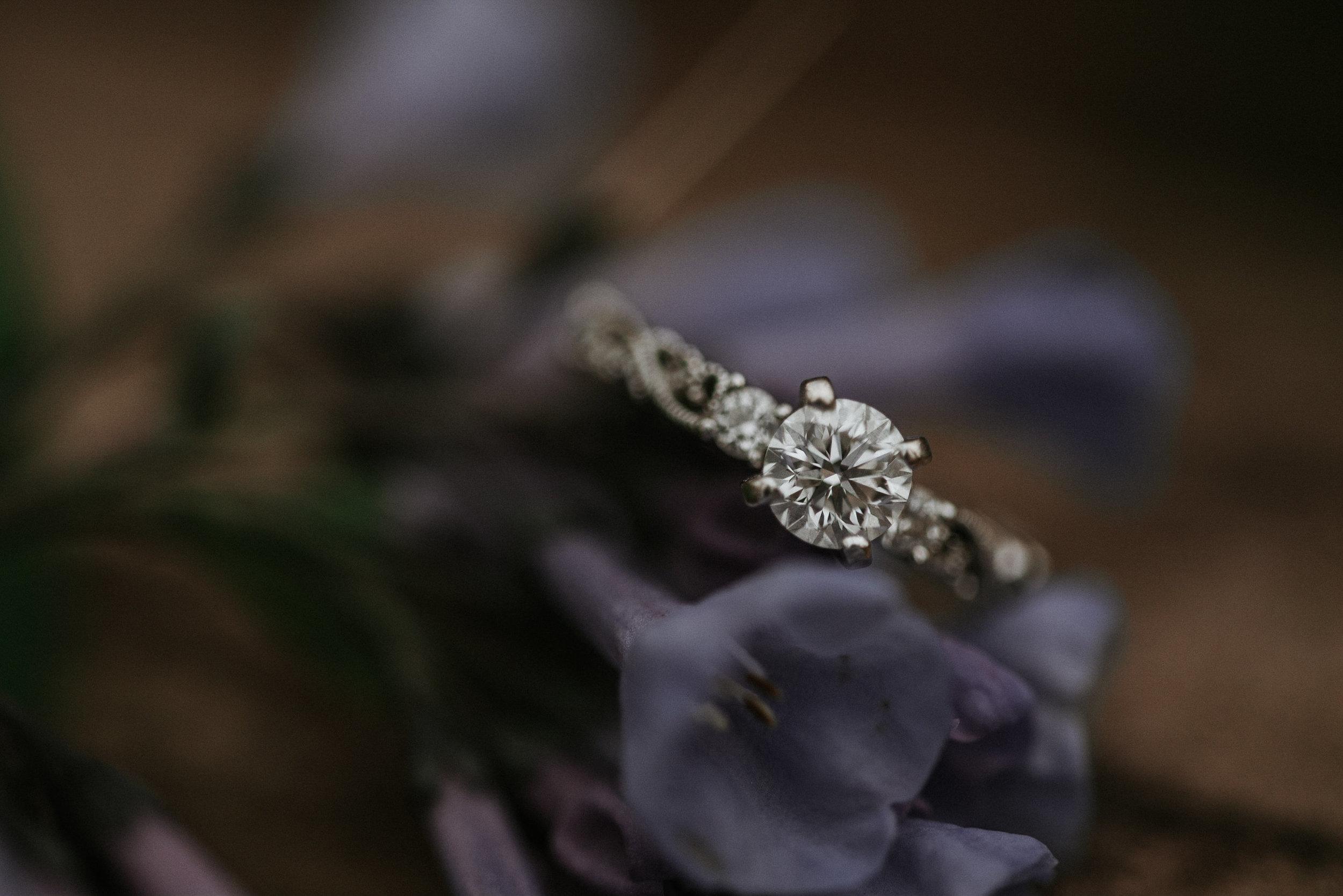Engagement ring on foliage