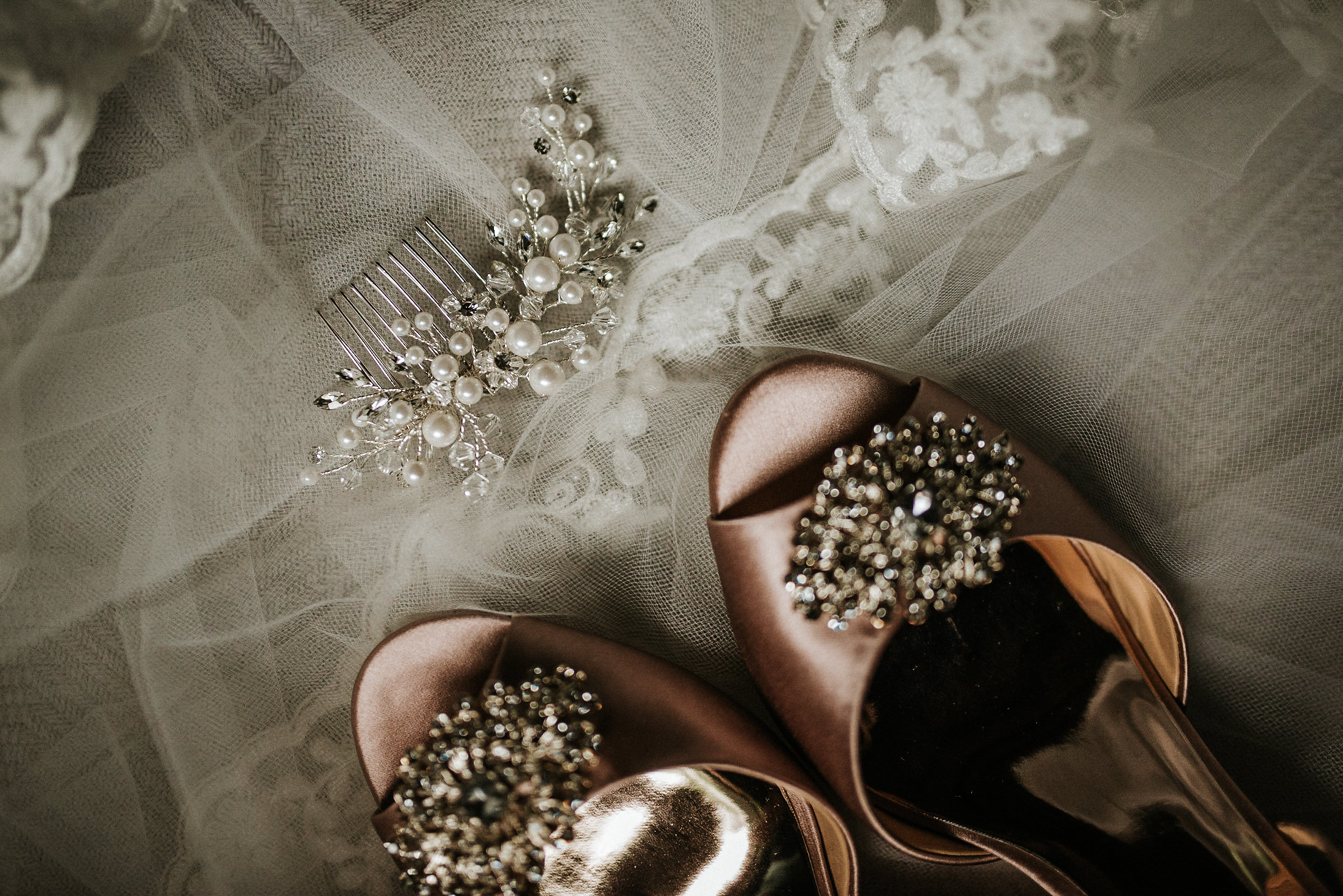 Wedding shoes and veil