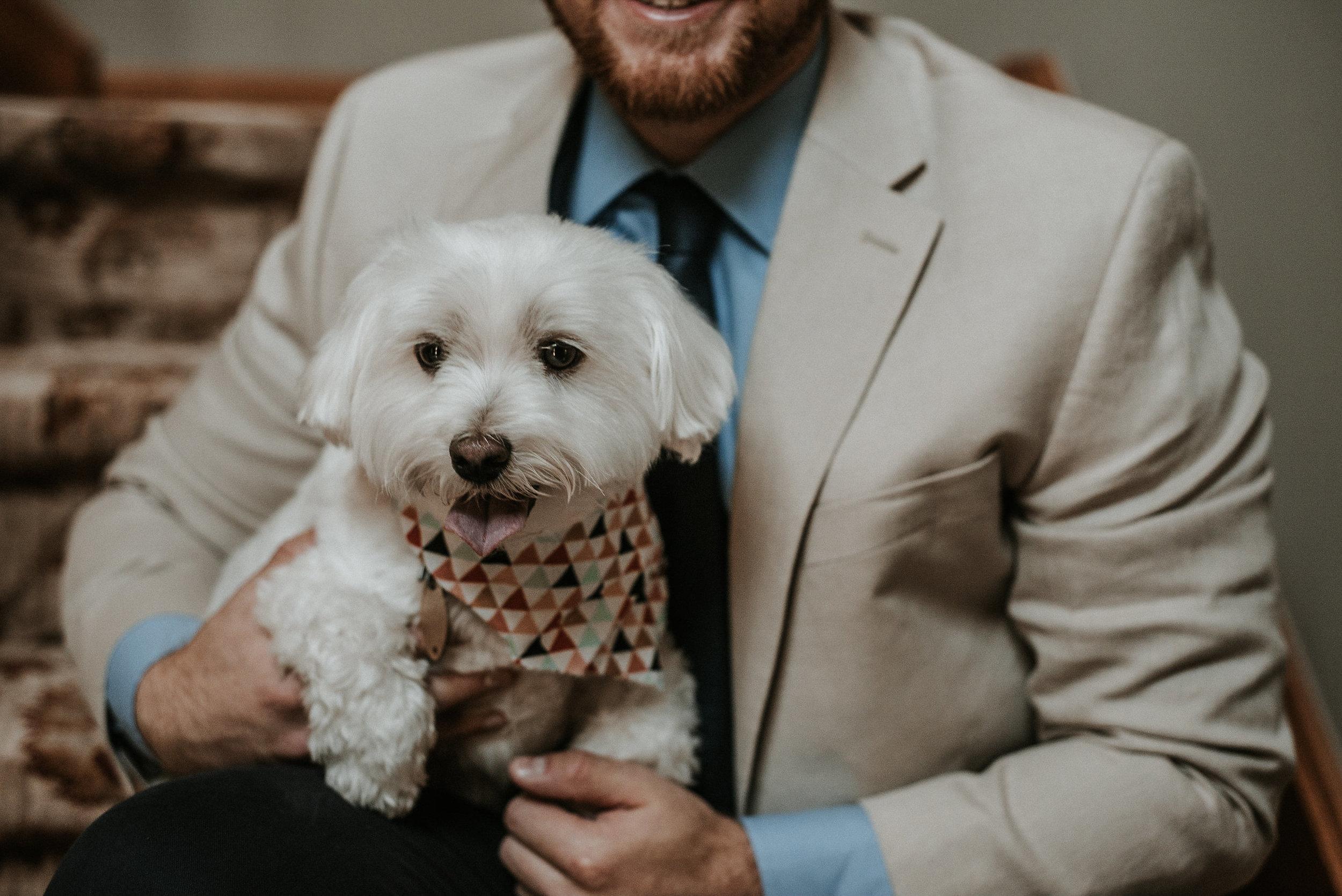 Groom holding white dog