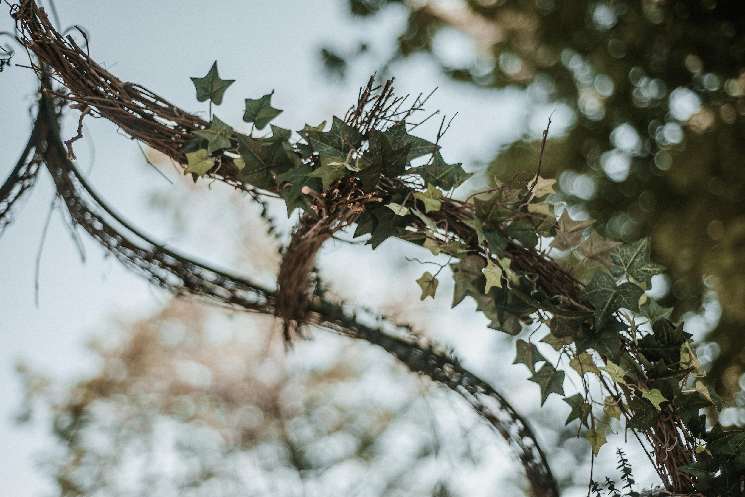 Ivy vines at wedding ceremony