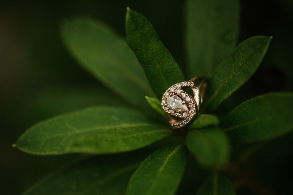engagement ring during engagement session at Smithsonian National Portrait Gallery