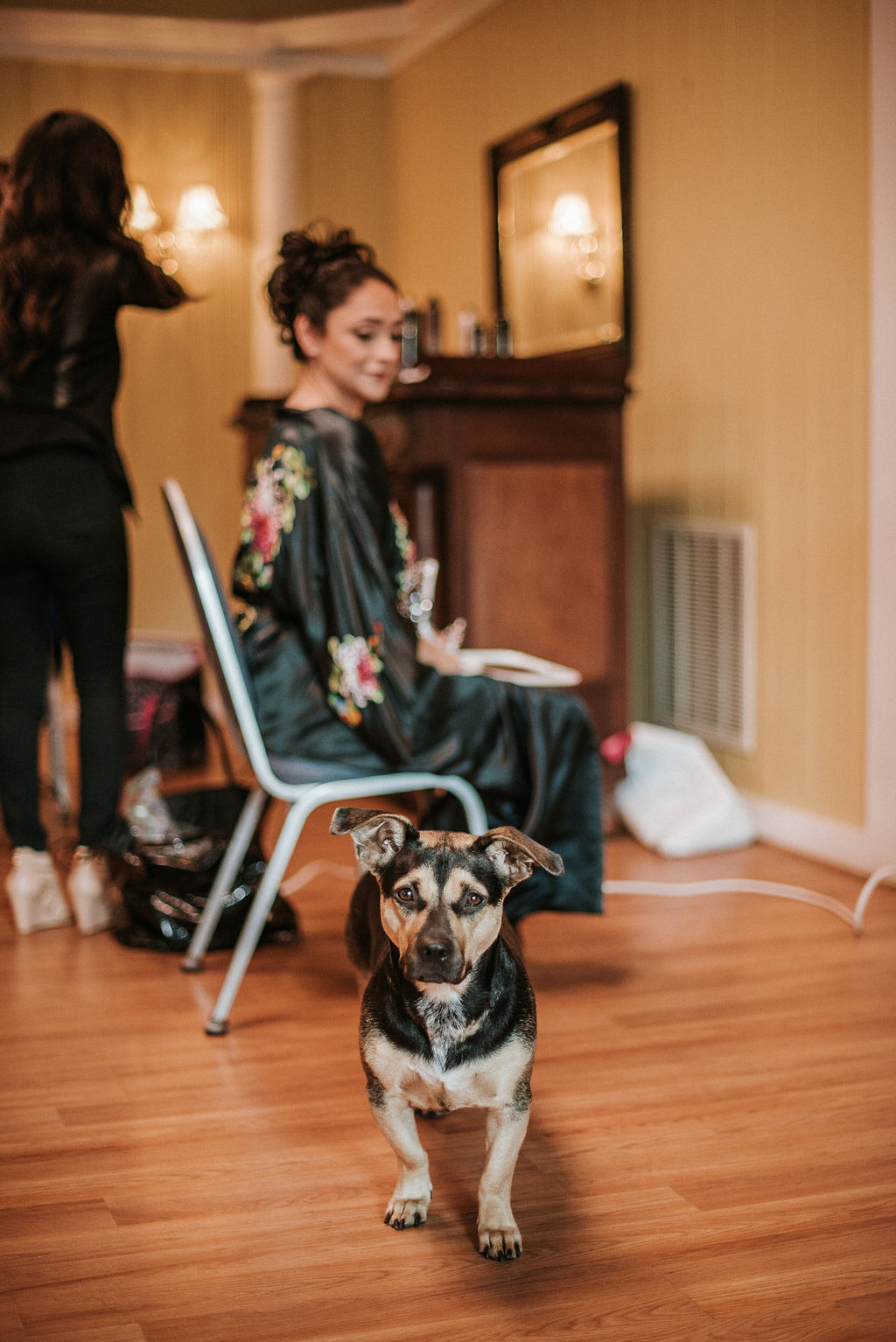 bride getting ready with her dog at the Inn at the Old Silk Mill