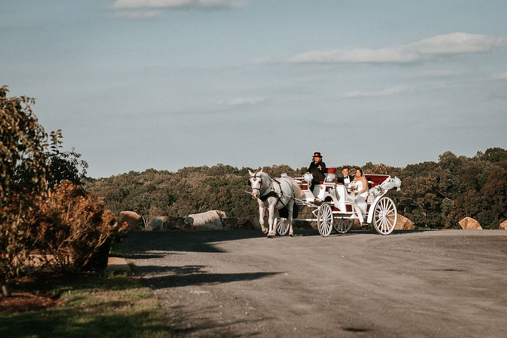 Bride and Father of the bride arriving in horse and carriage at Blue Valley Vineyard