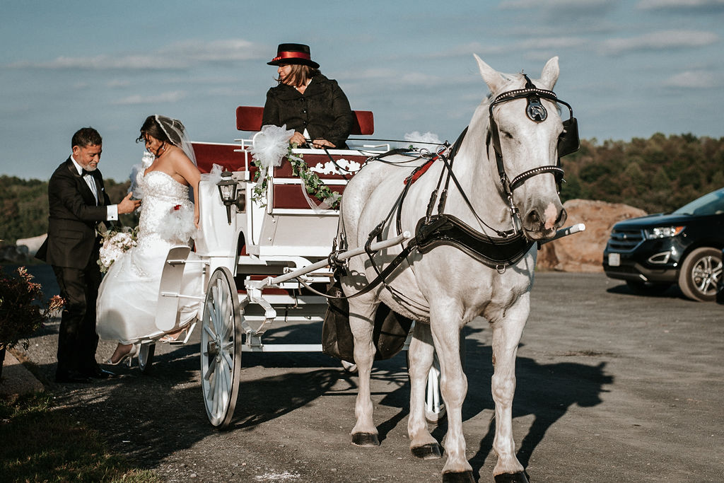 Bride getting out of the carriage at Blue Valley Vineyard