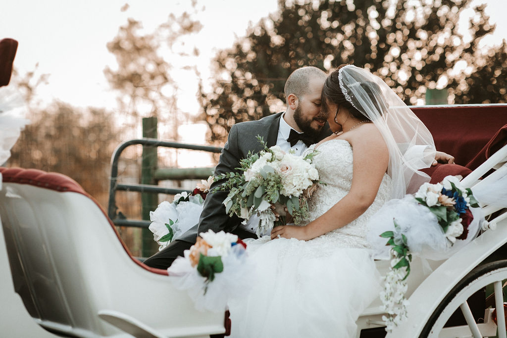 bride and groom cuddling in carriage at Blue Valley Vineyard