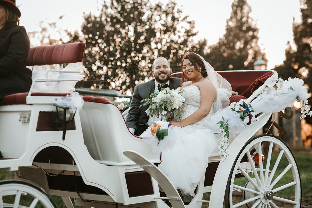 bride and groom smiling inside carriage at Blue Valley Vineyard