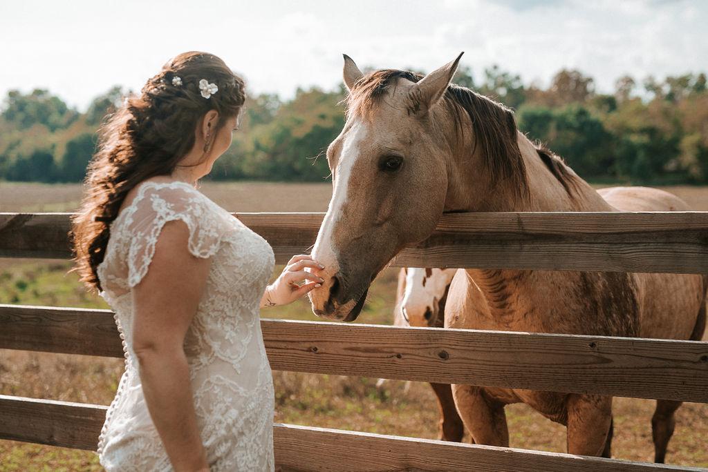 bride petting horse at Khimaira Farm