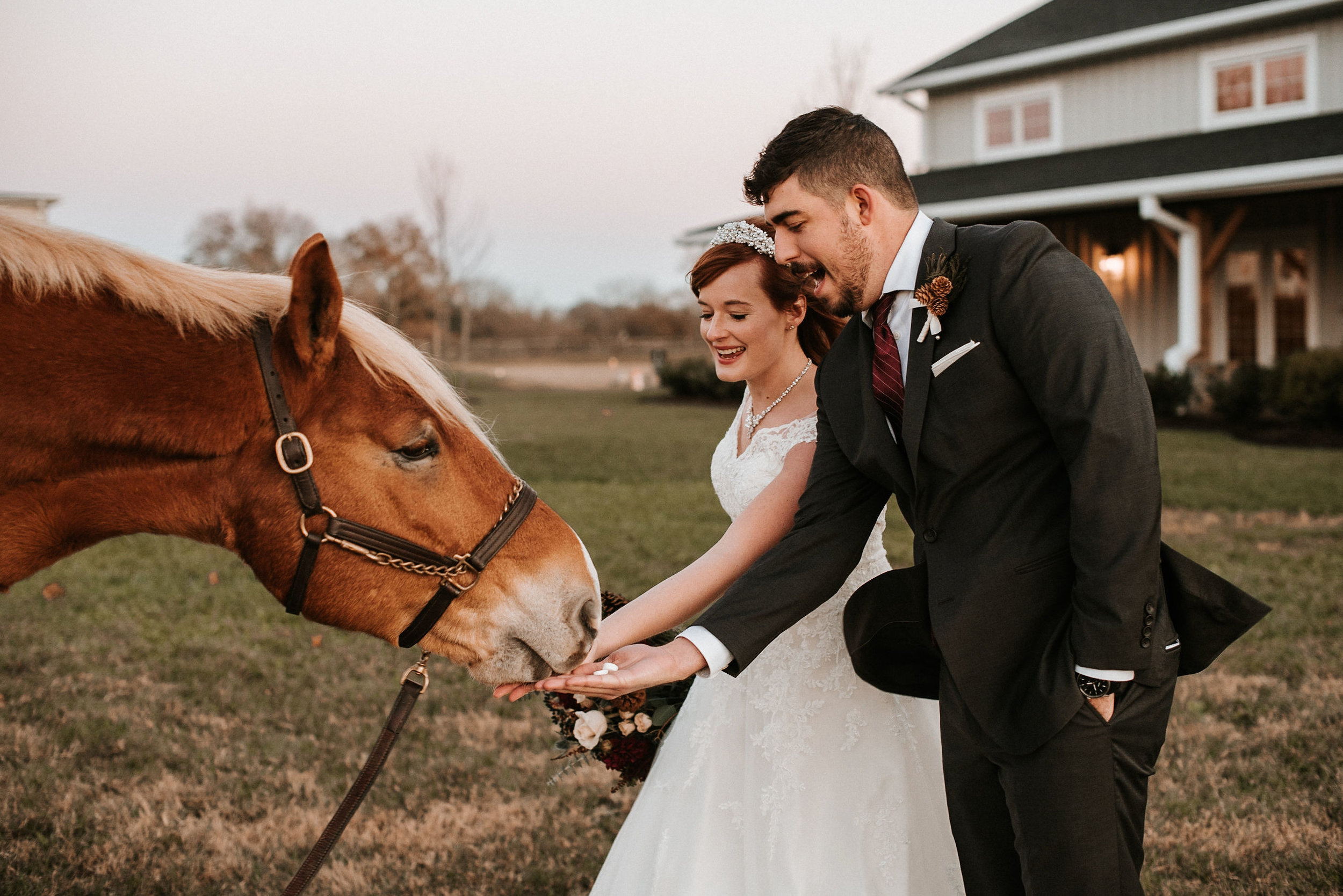 bride and groom feeding horse at The Middleburg Barn at Fox Chase Farm