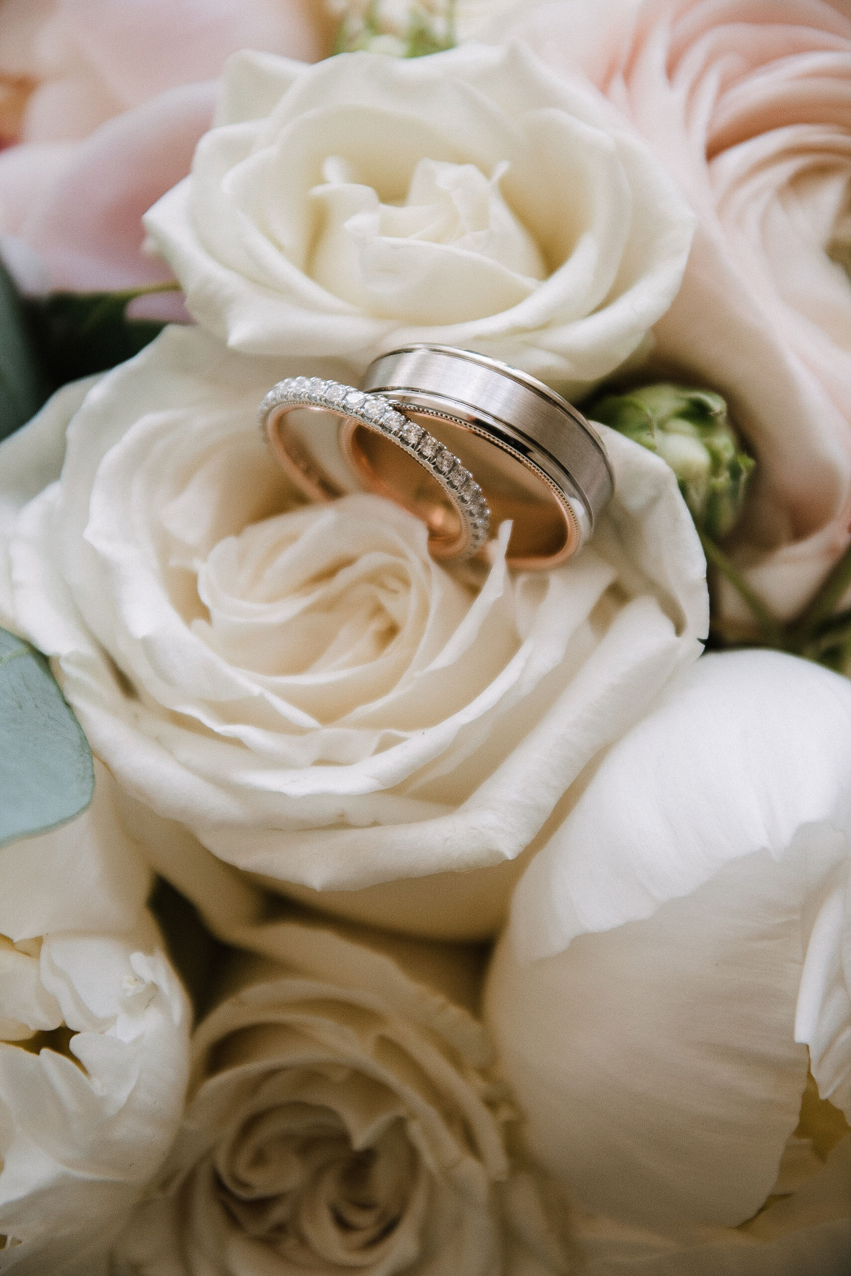 detail shot of weddings rings at Rixey Manor