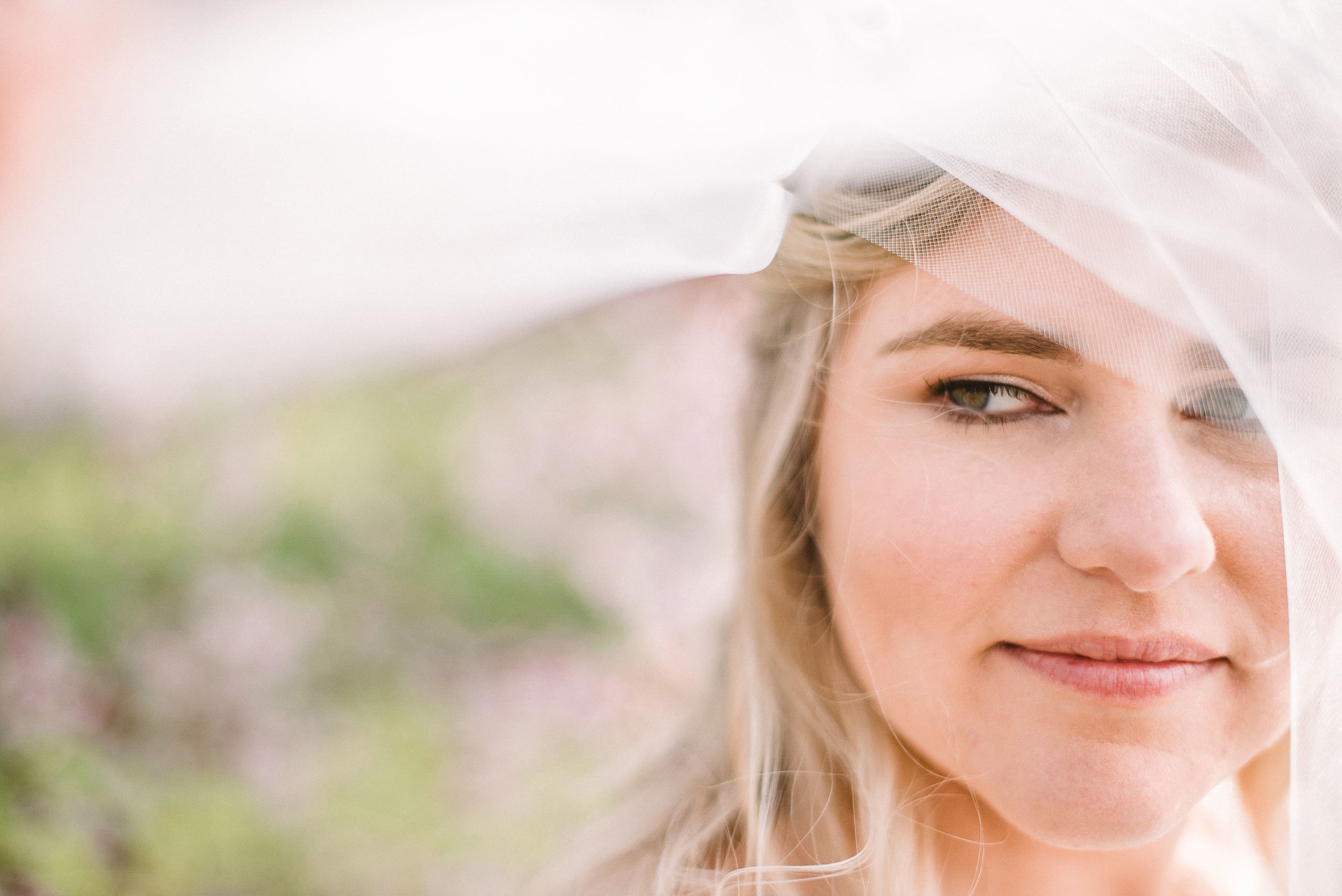 bridal portrait under veil at Rixey Manor