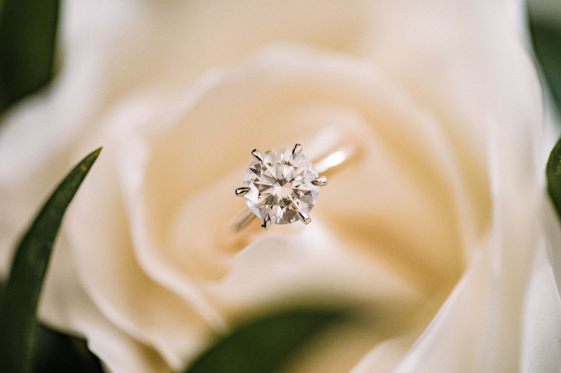 detail shot of engagement ring at The Salamander Resort