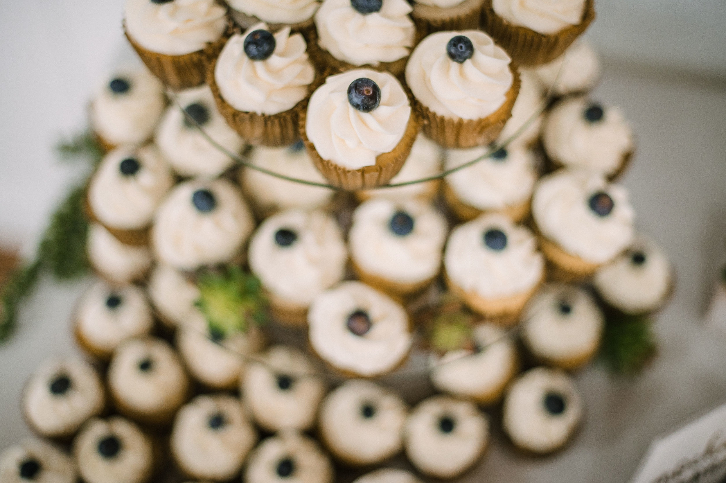 detail shot of cupcakes at MAVFC Reception Hall