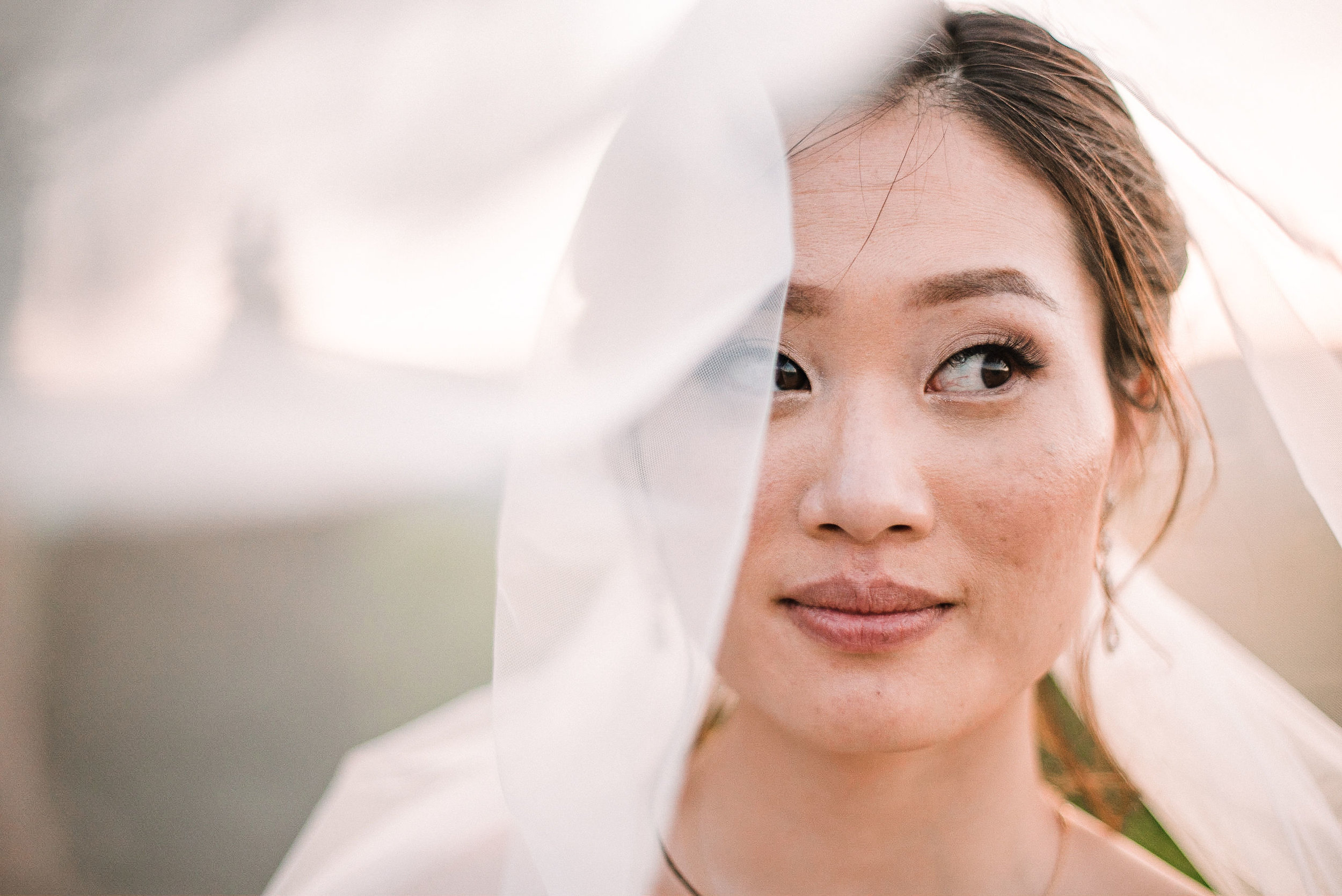 bridal portrait under veil at House Mountain Inn & Irvine Estate