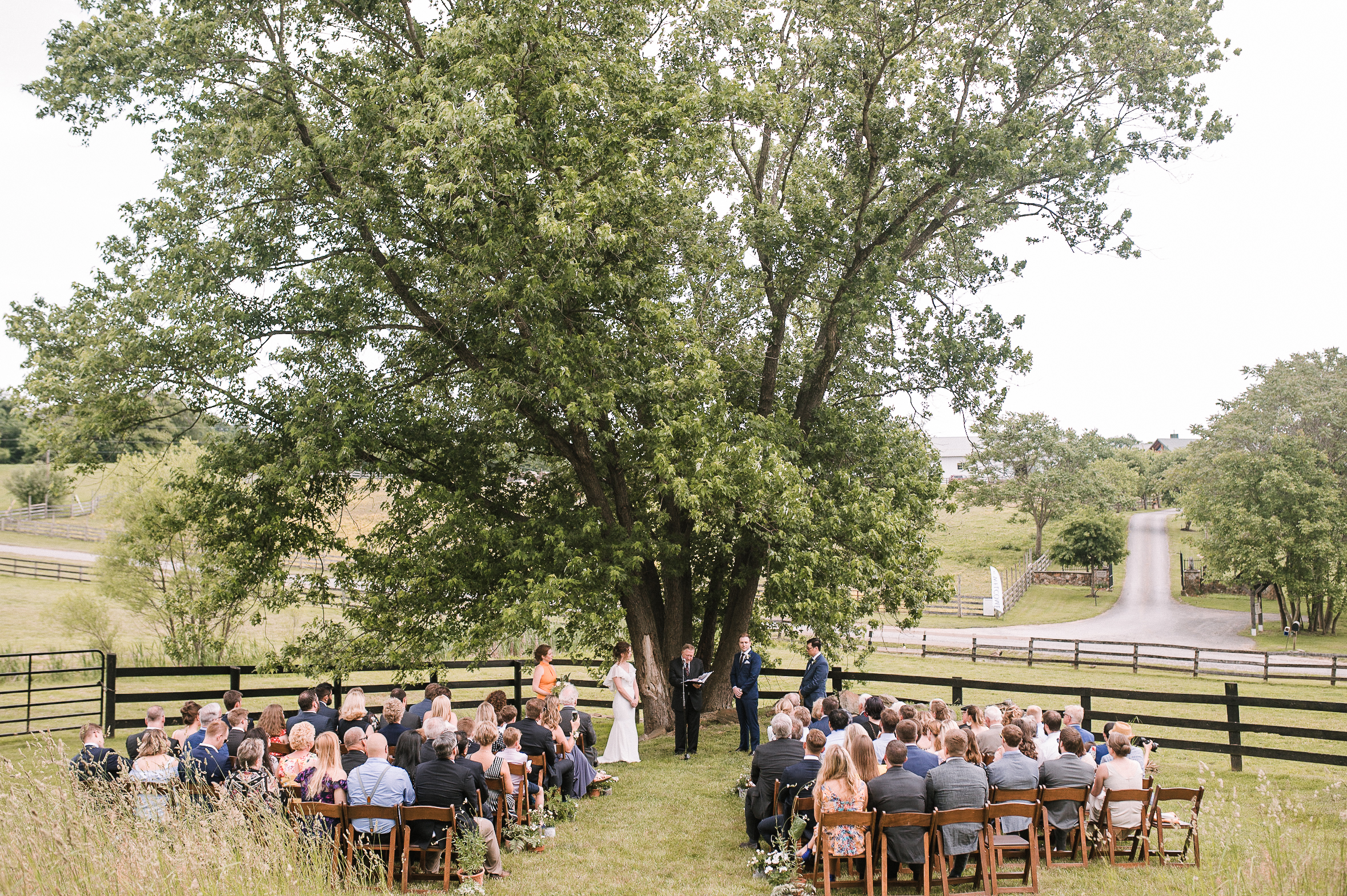 ceremony shot at tranquility farm