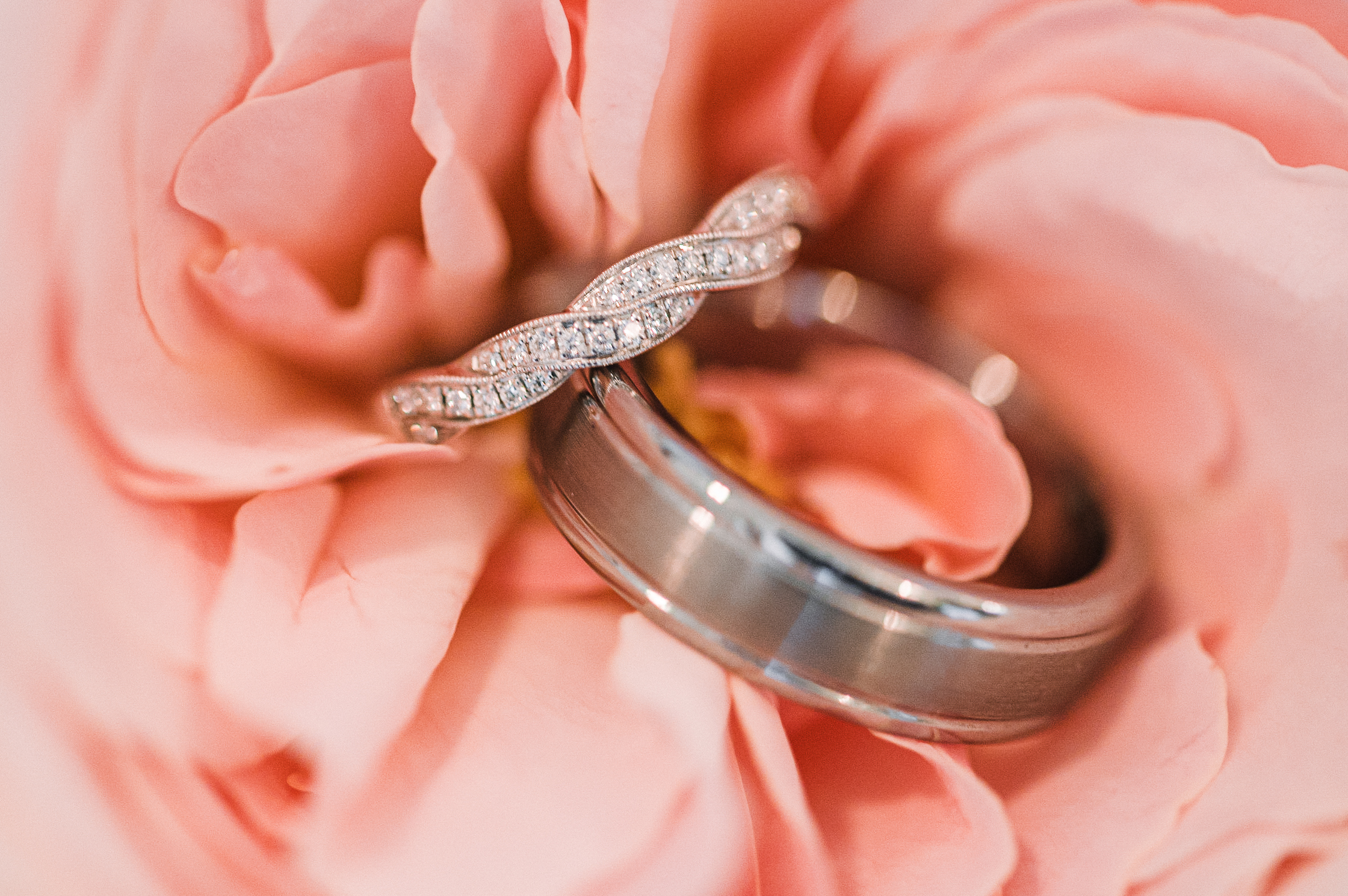 detail shot of wedding rings at Bluemont Vineyard