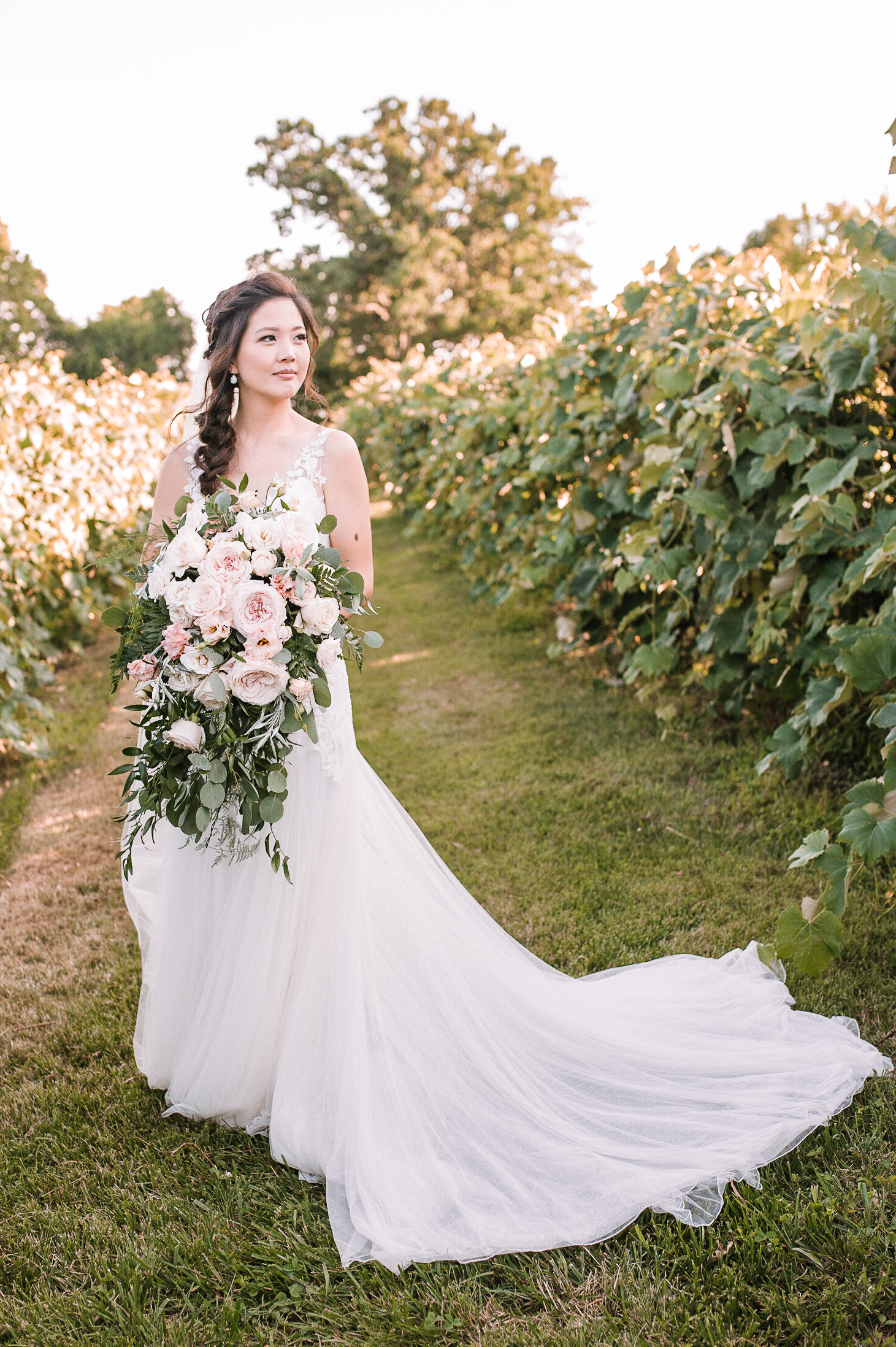 bridal portrait at Bluemont Vineyard