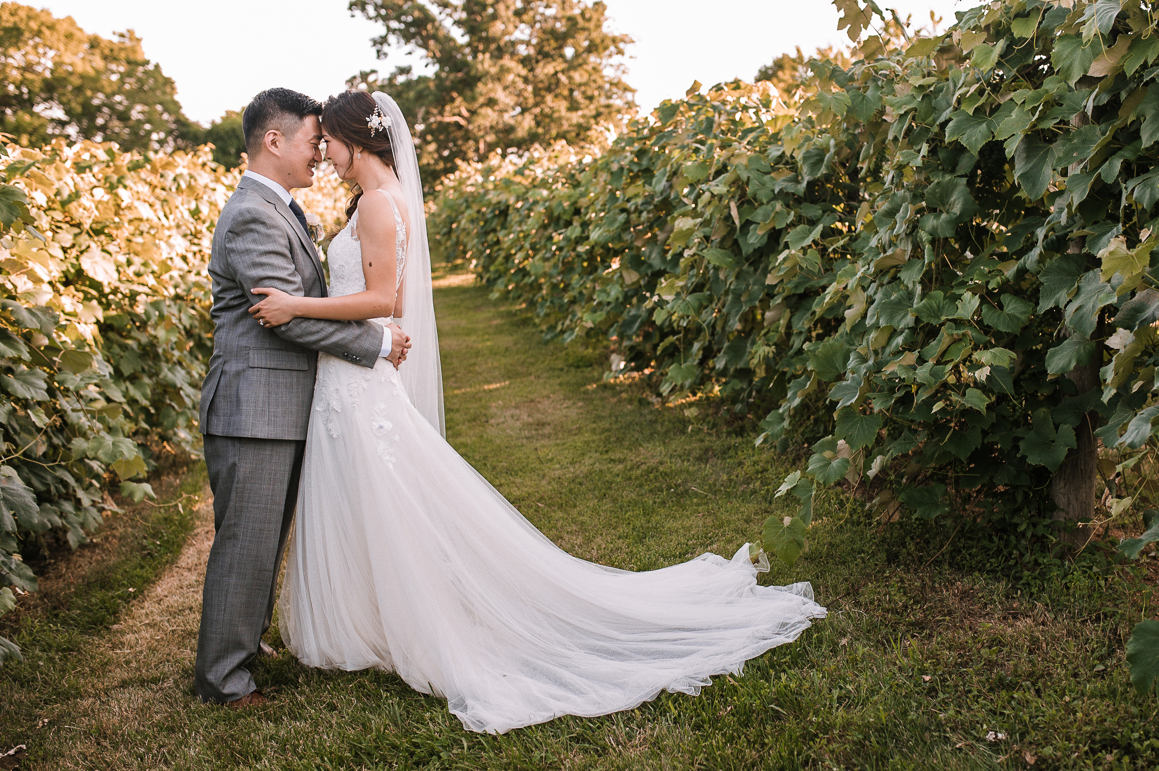 bride and groom embracing at Bluemont Vineyard