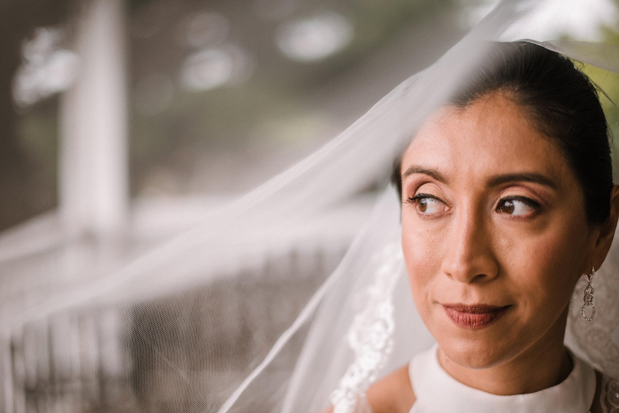 bridal portrait under veil at Bluemont Vineyard
