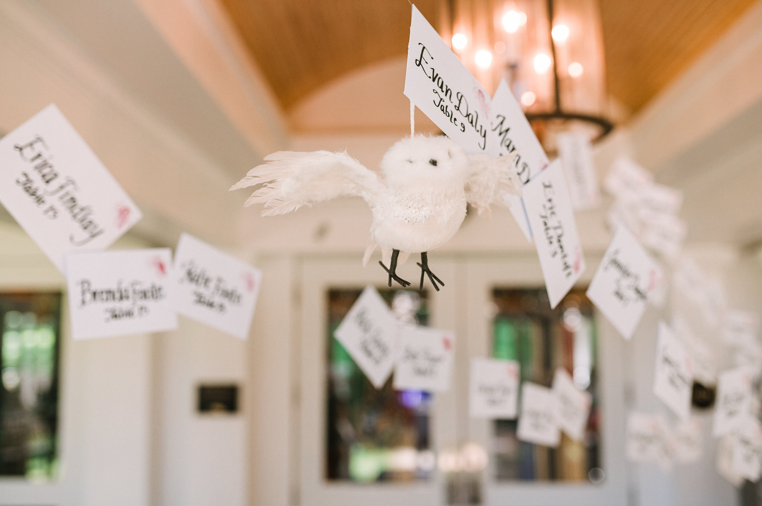 reception details at Airlie