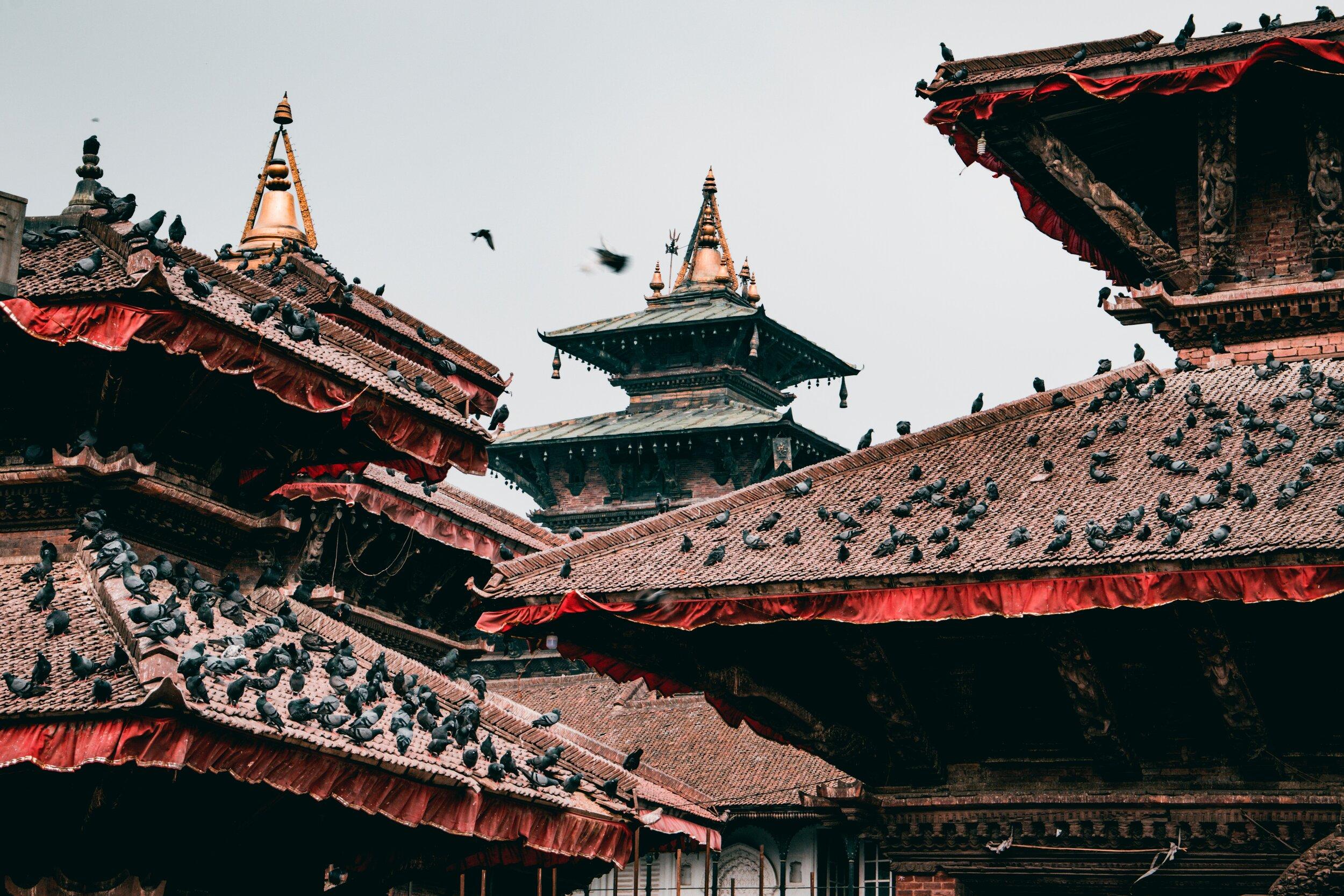 nepal5.jpg