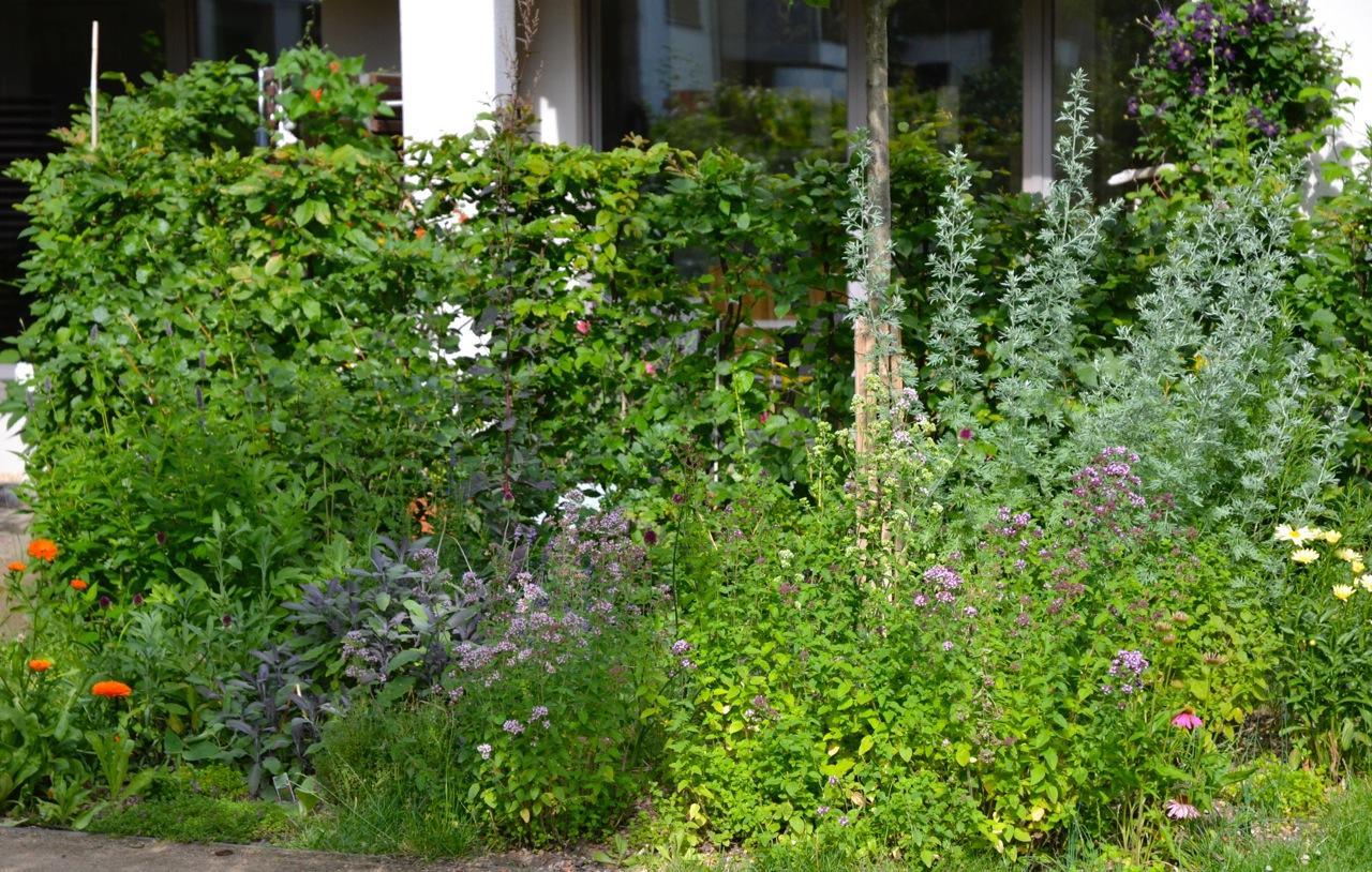 Krautergarten, Innenhof berlin