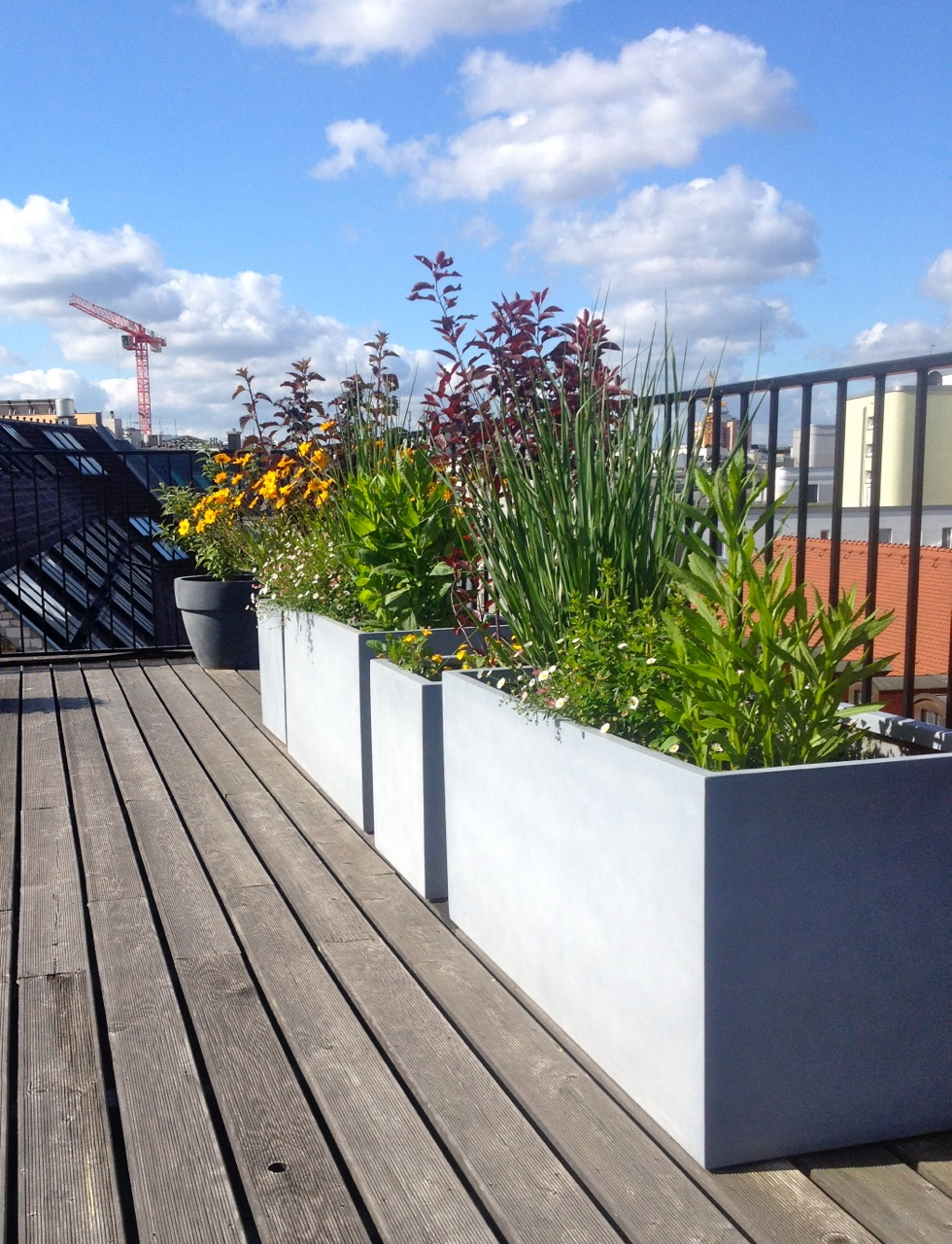 Pflanzkuebel Dachterrasse in Berlin