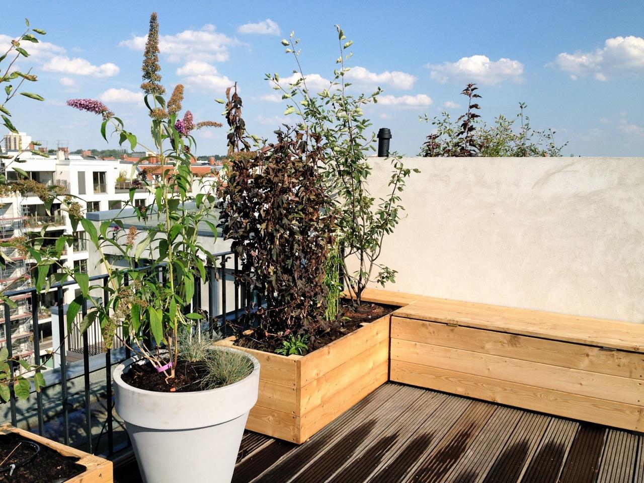 Hochbeete auf Dachterrasse in Berlin