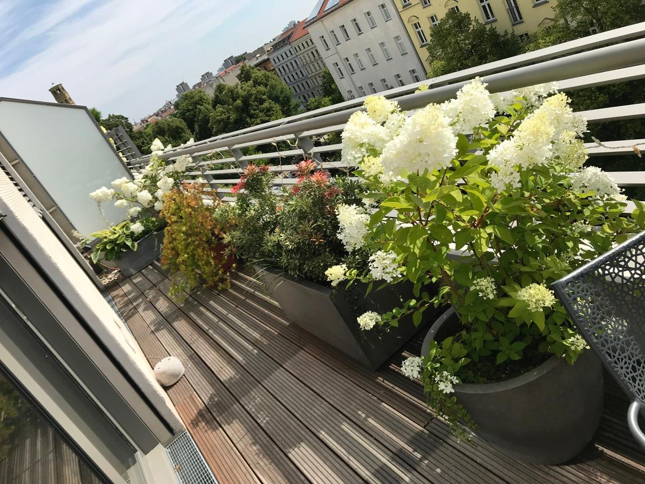 schmale Terrasse Berlin