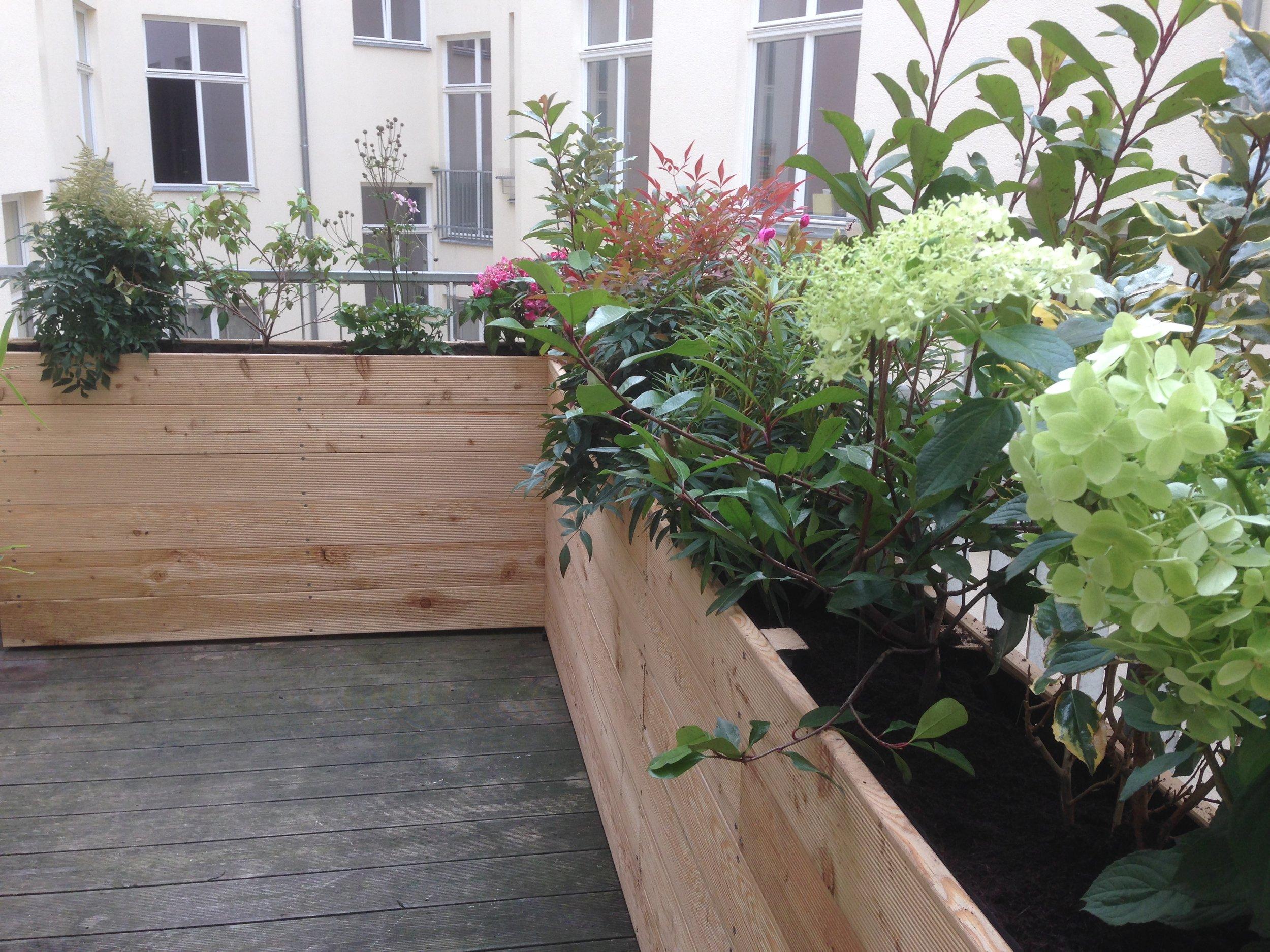Sichtschutz aus Pflanzgefaessen auf Balkon